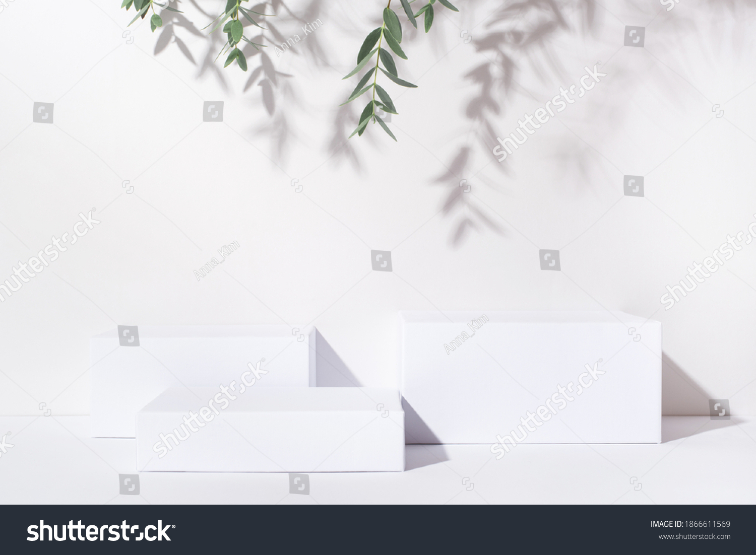 White background for cosmetic products. Rectangular podiums with the shadow of the branches of the eucalyptus. #1866611569
