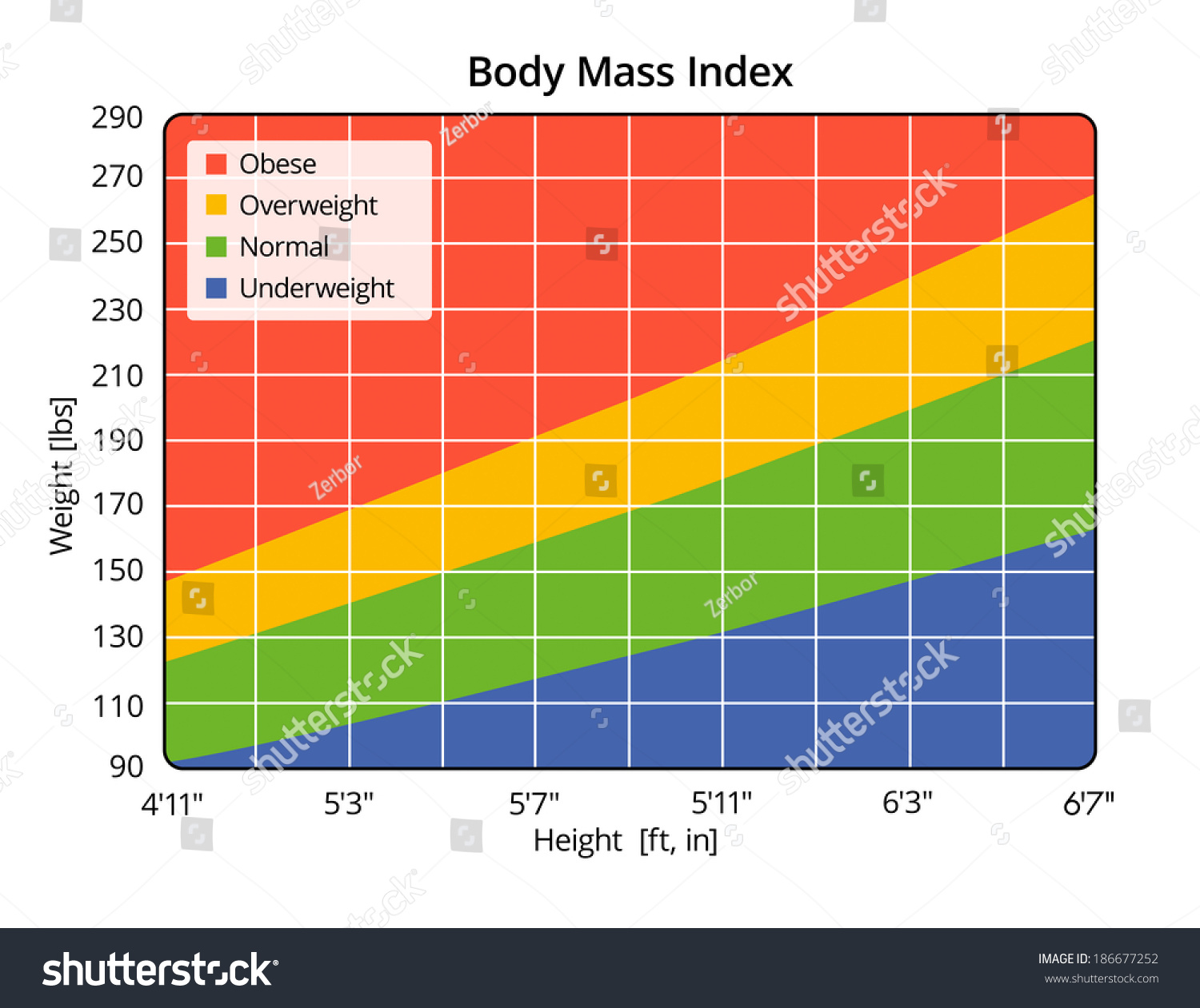 how to find out your body mass index