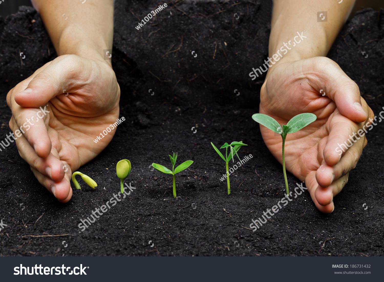 Смотреть planting seeds 2 23 фотография