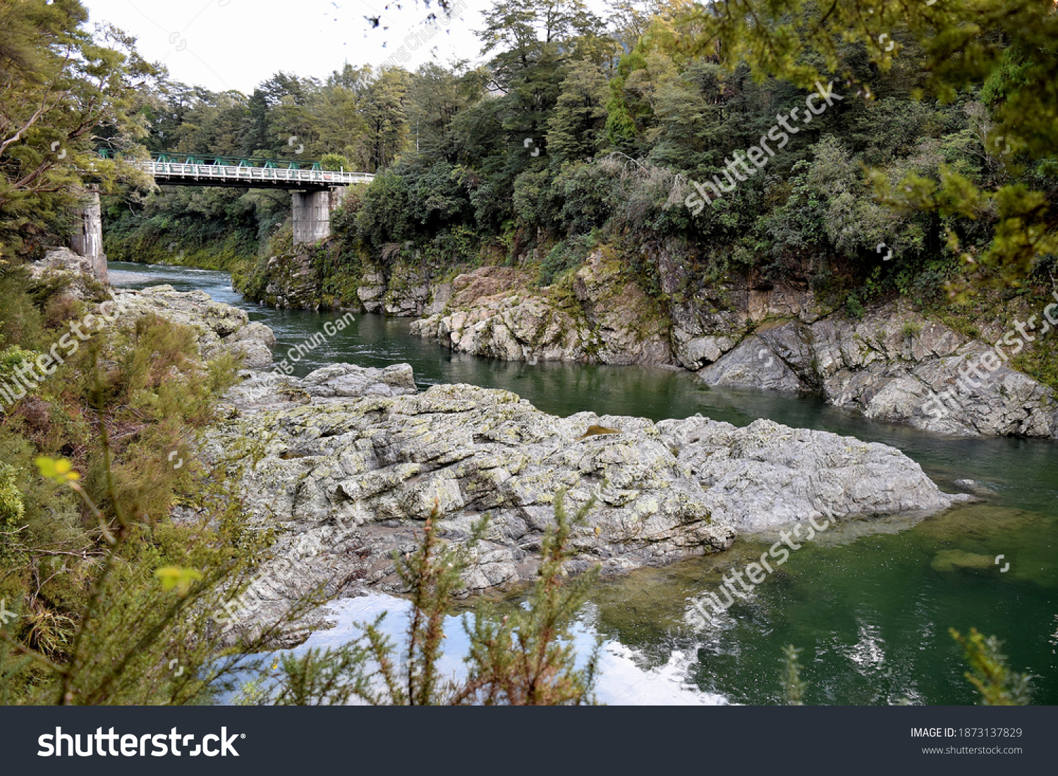 Green waters of Pelorus River flows through the scenic reserves in Marlborough region.  #1873137829