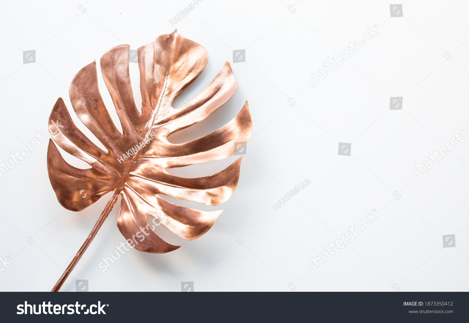 Tropical leaves in gold color on white space background.Abstract monstera leaf decoration design #1873350412