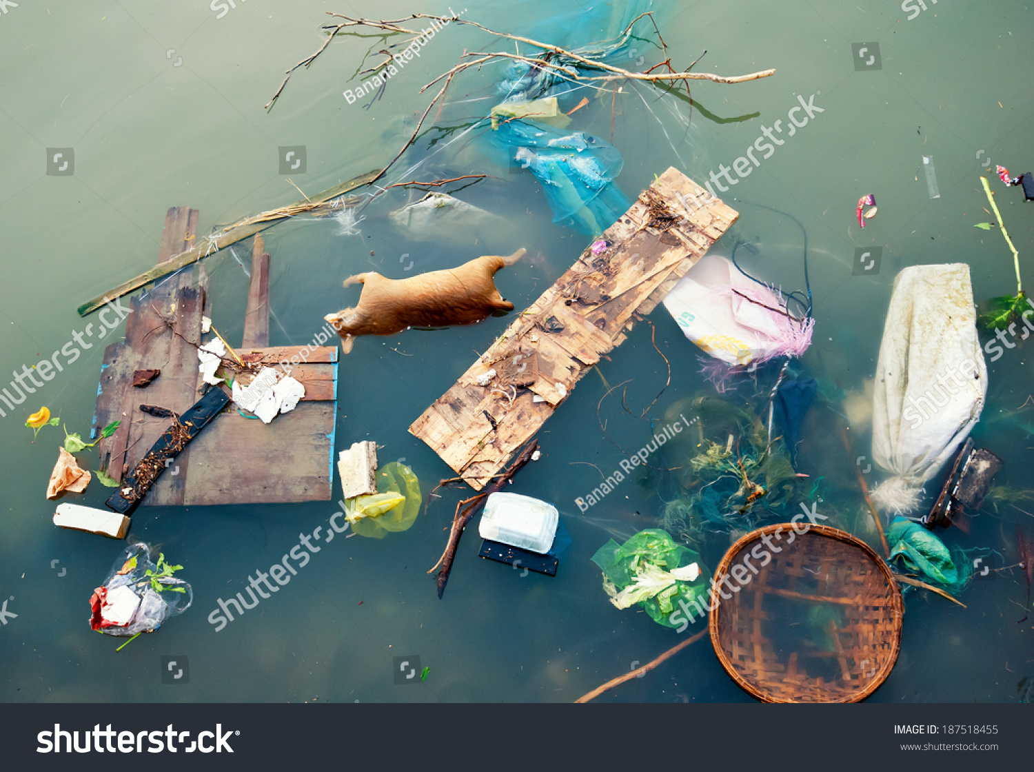 Water Pollution Plastic Garbage Dirty Trash Stock Photo ...