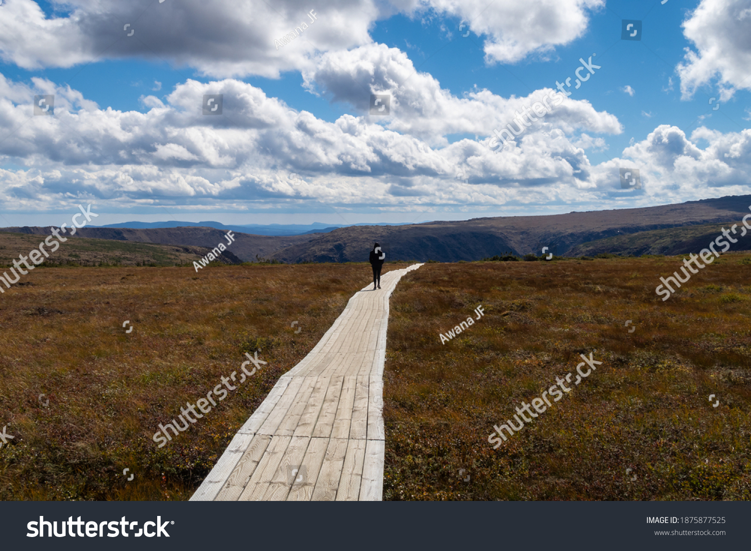 stock-photo-back-view-of-a-hiker-walking