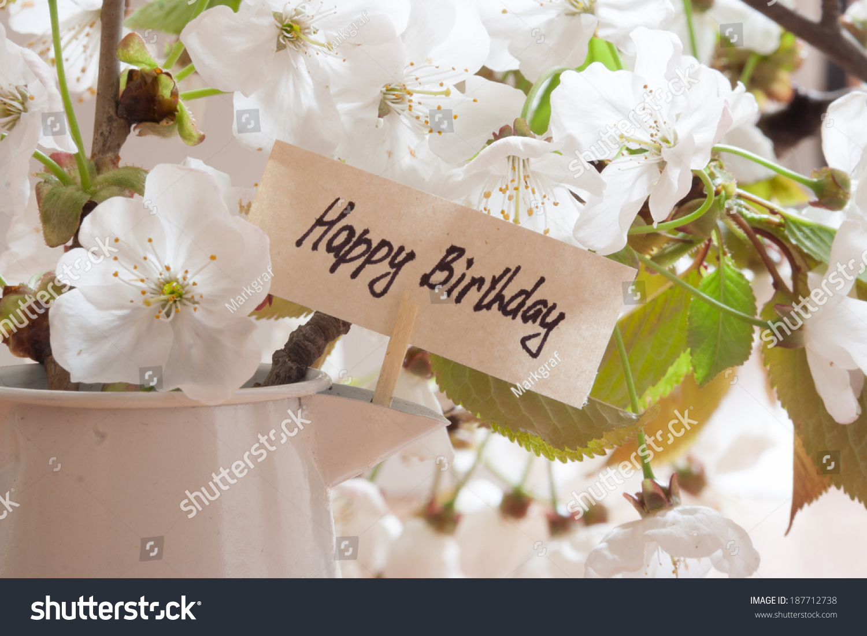 Happy birthday greeting card white flowers stock photo edit now happy birthday greeting card white flowers on a background izmirmasajfo