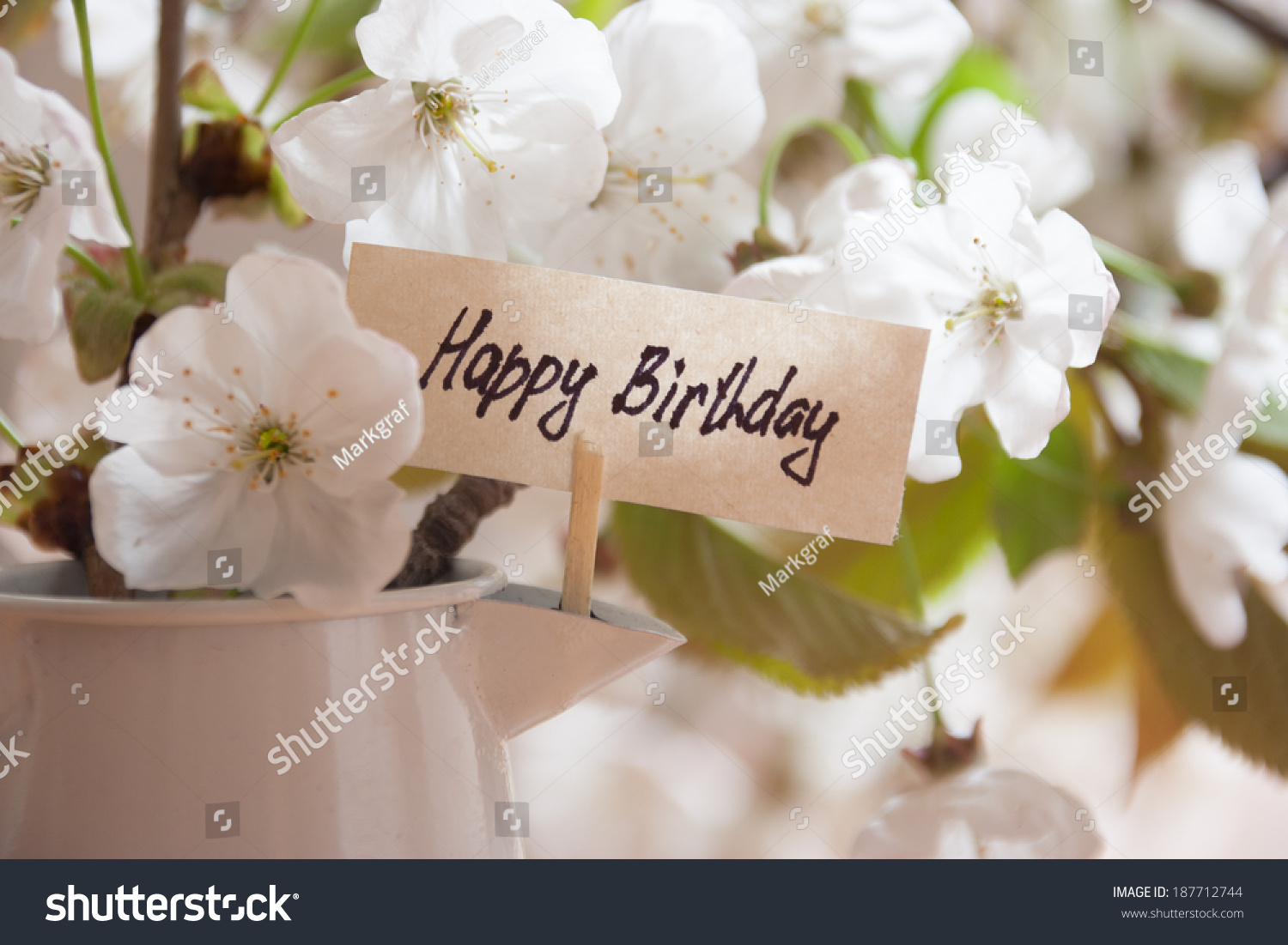 Happy birthday greeting card white flowers stock photo download now happy birthday greeting card white flowers on a background izmirmasajfo