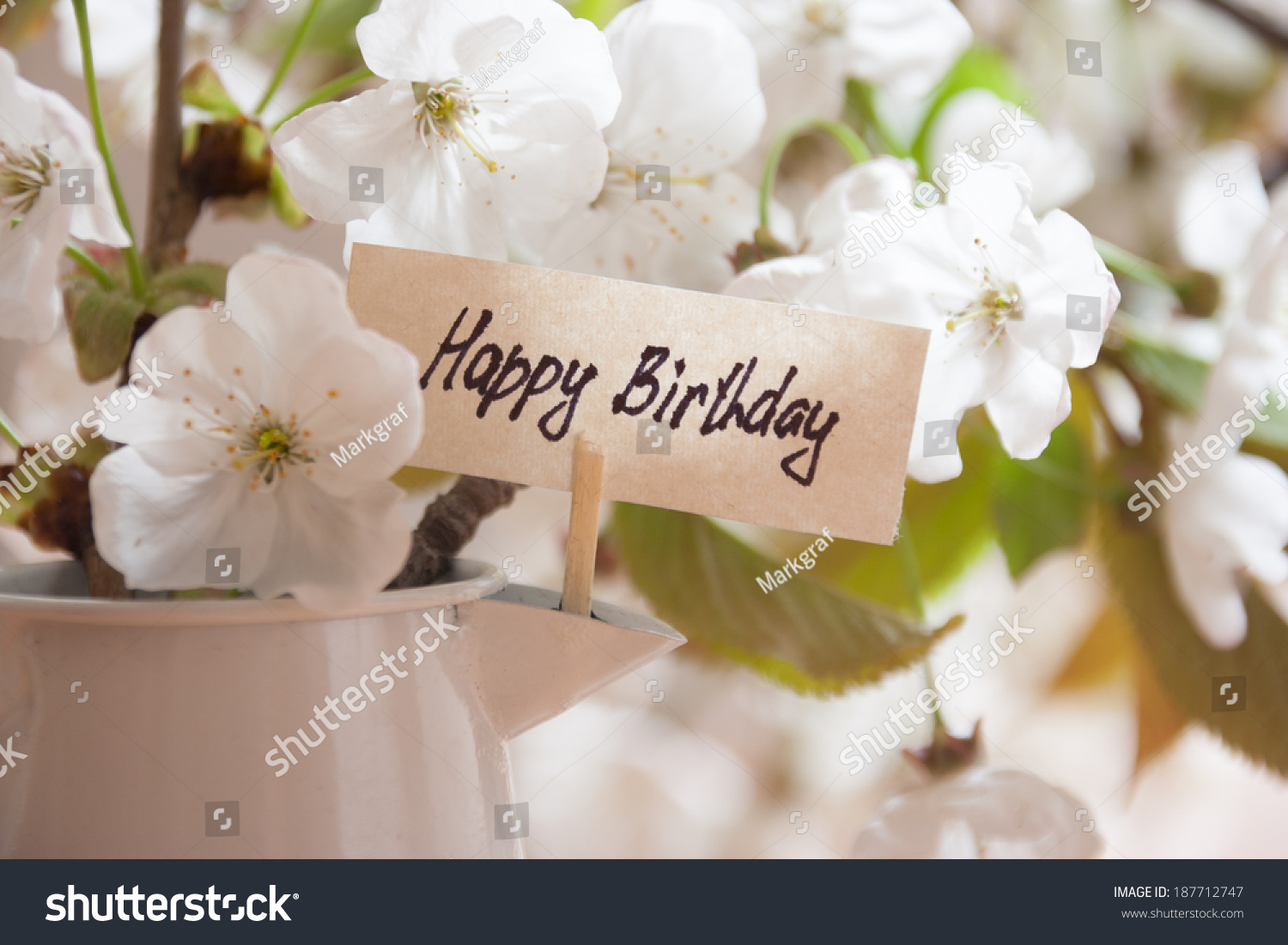 Happy Birthday Greeting Card White Flowers On A Background