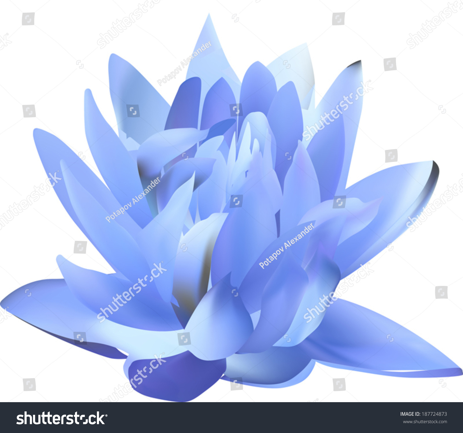Illustration blue lily isolated on white stock vector 187724873 illustration with blue lily isolated on white background izmirmasajfo Gallery