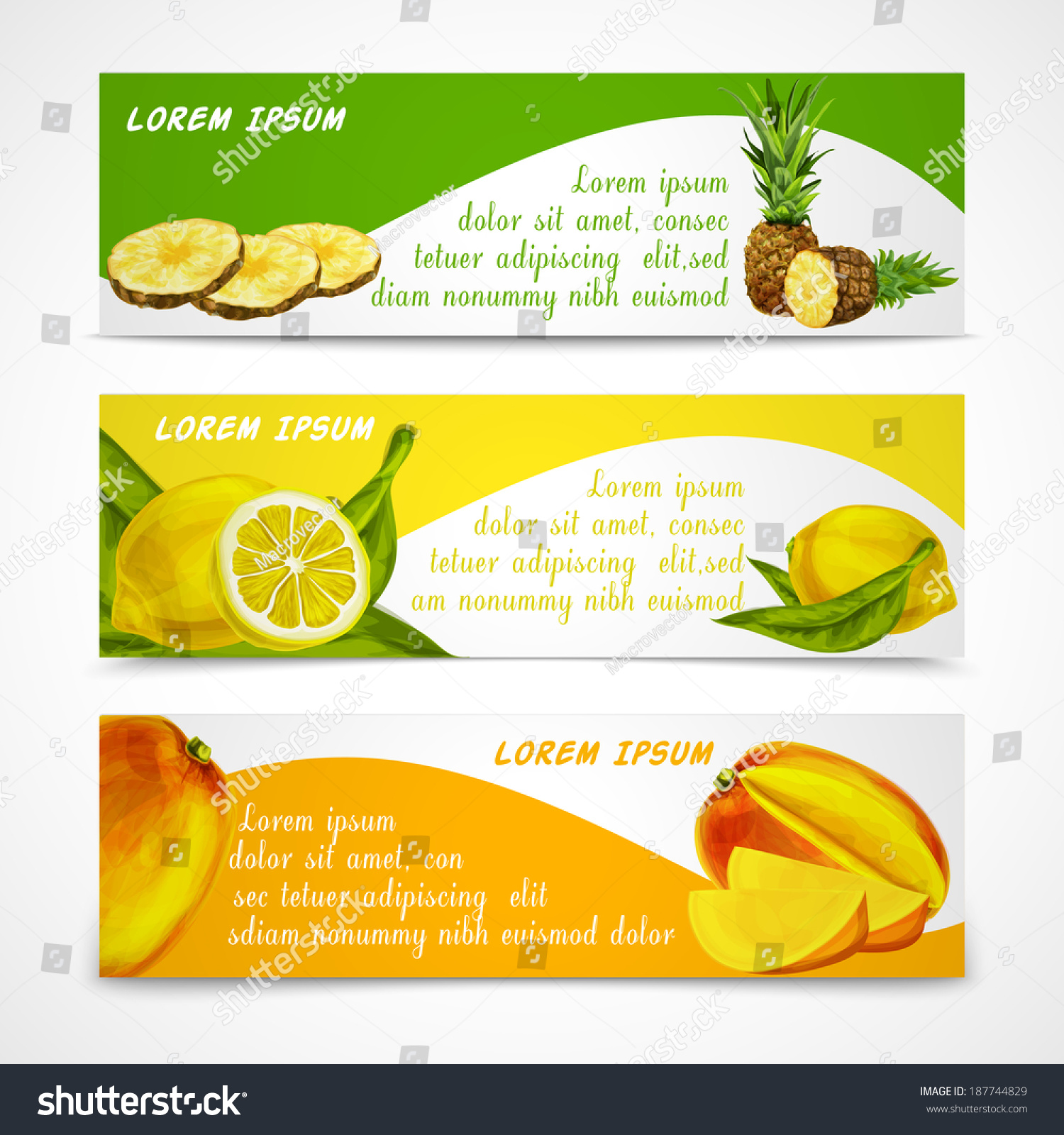Naturalanic Tropical Fruits Banners Set Of Cut And Whole
