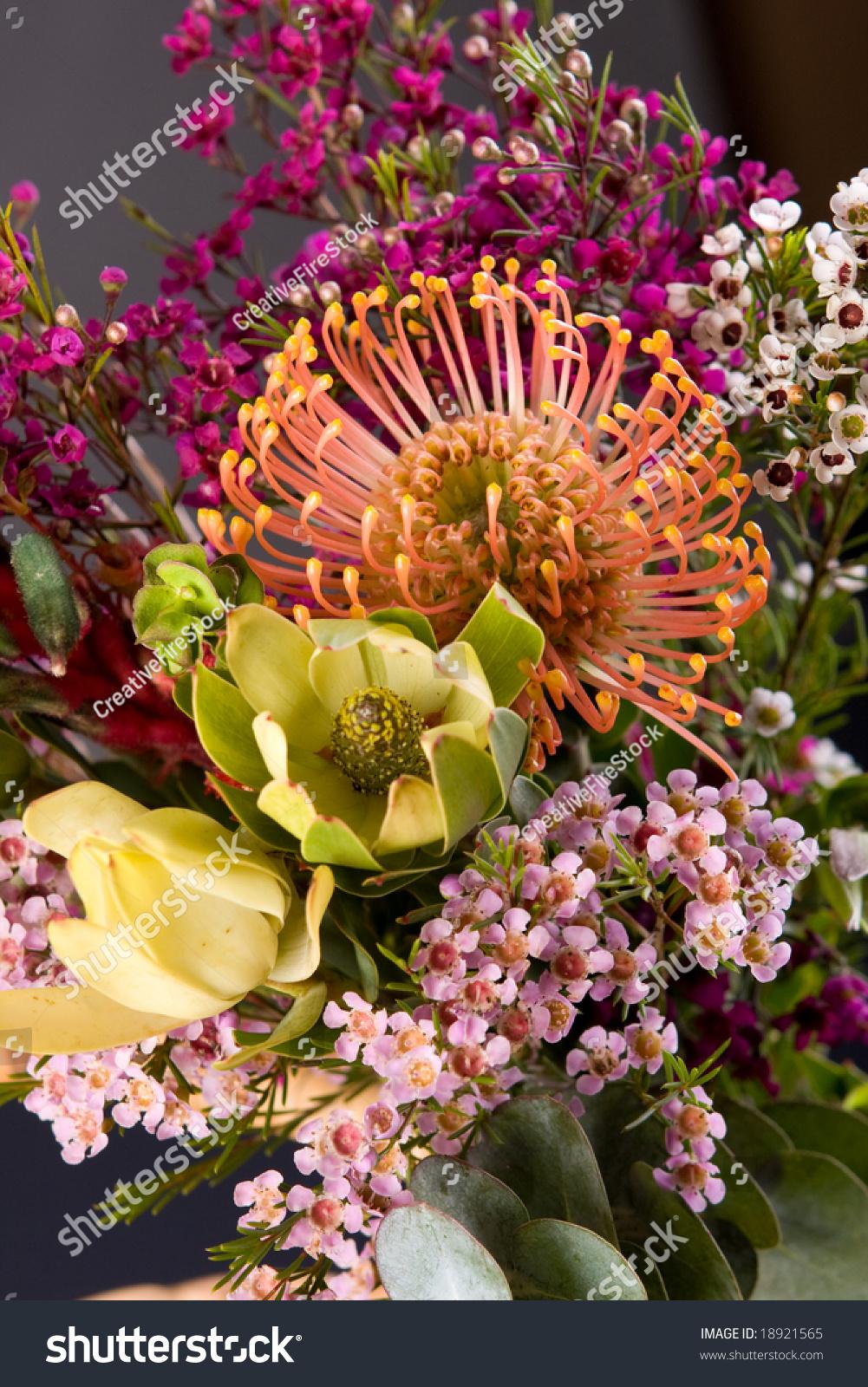 Bouquet Colorful Fresh Native Australian Flowers Stock Photo Edit