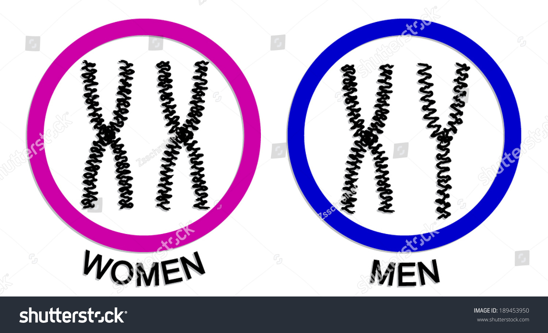 Women Men Chromosome Icons Symbol Vector Stock Vector 189453950
