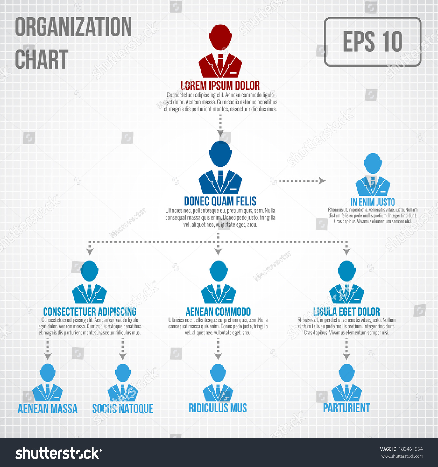 Organisational Chart Infographic Business Hierarchy Boss Stock ...