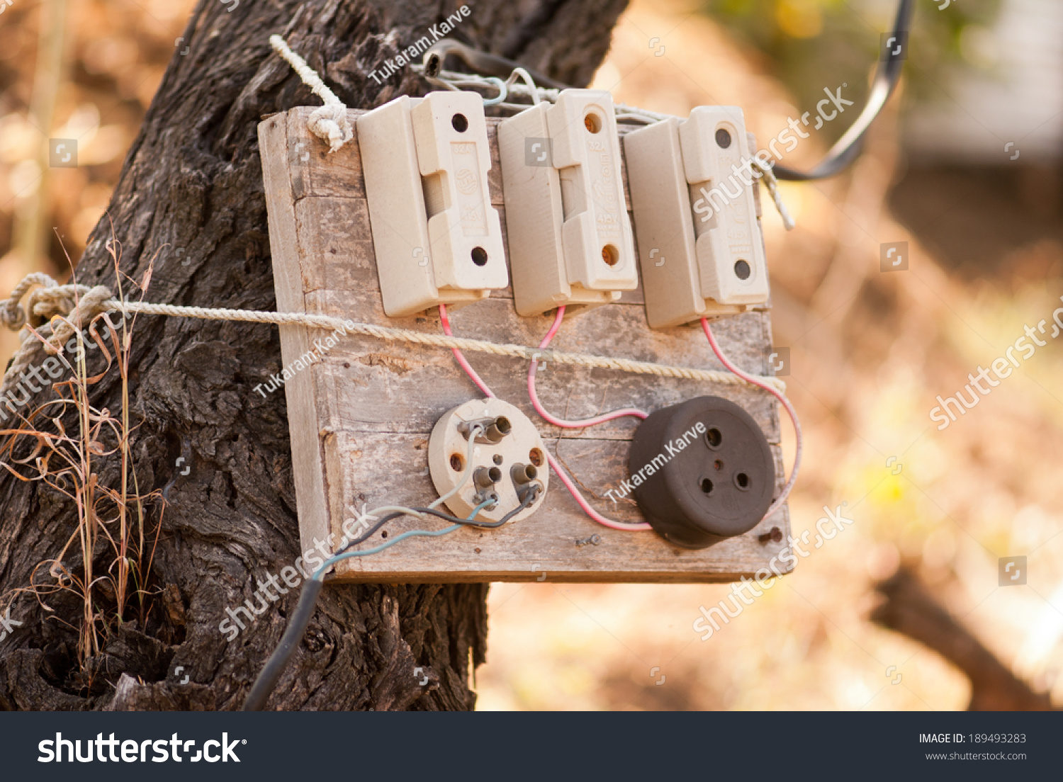Old Electric Fuse box on tree, Maharashtra, India, south East Asia