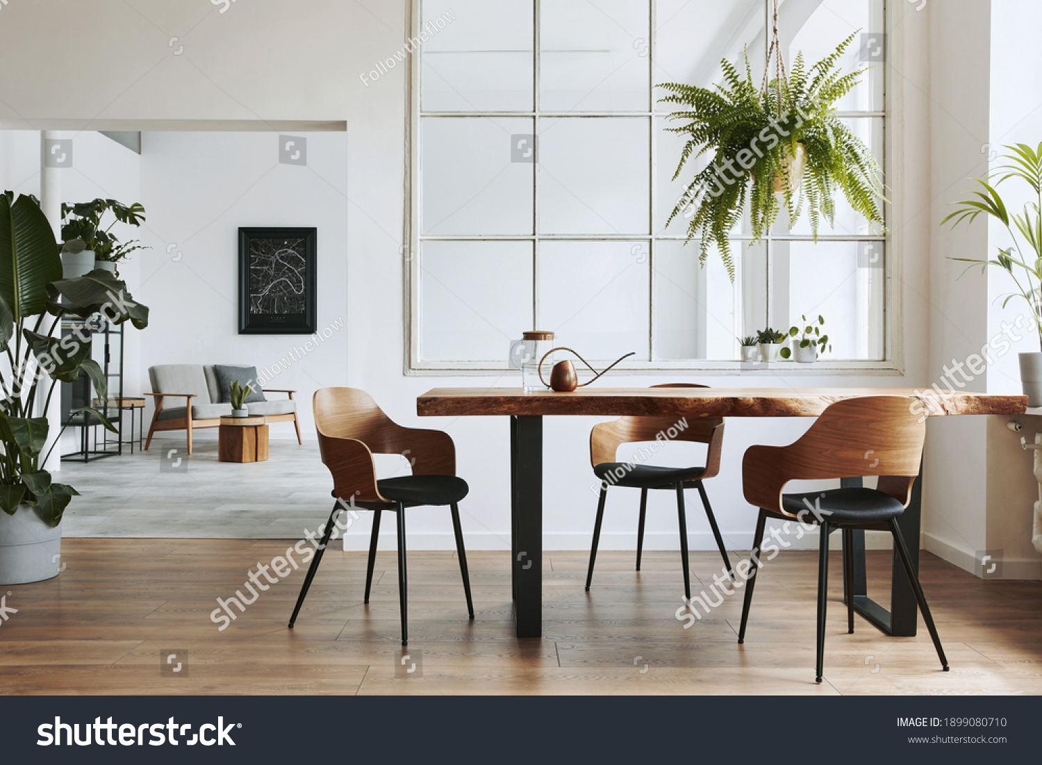 Stylish and botany interior of dining room with design craft wooden table, chairs, a lof of plants, window, poster map and elegant accessories in modern home decor. Template. #1899080710