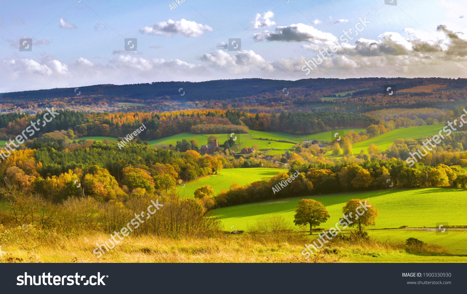 The beautiful colours of Surrey Hills #1900330930