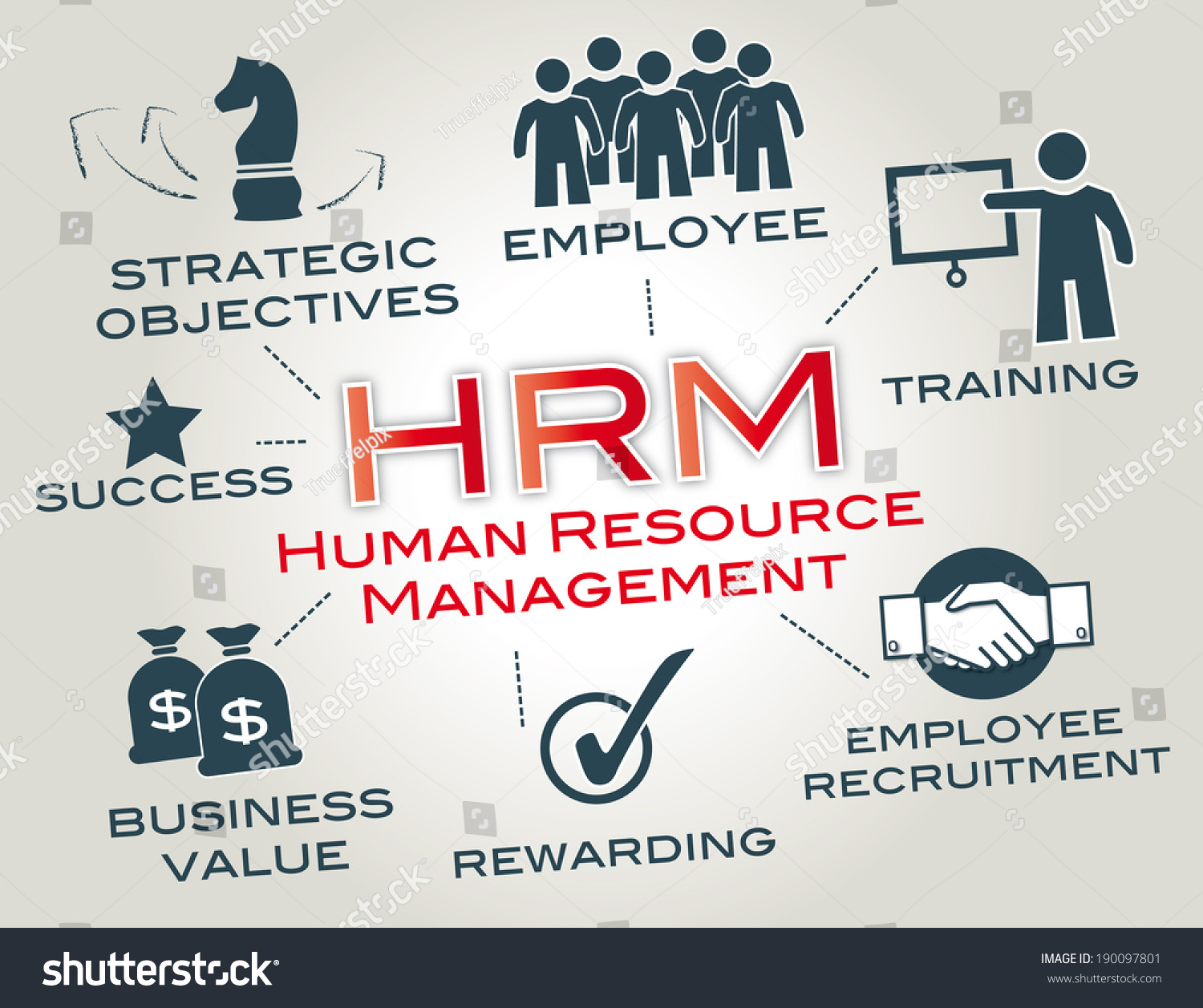 management function After an organization's structural design is in place, it needs people with the right skills, knowledge, and abilities to fill in that structure people are an.
