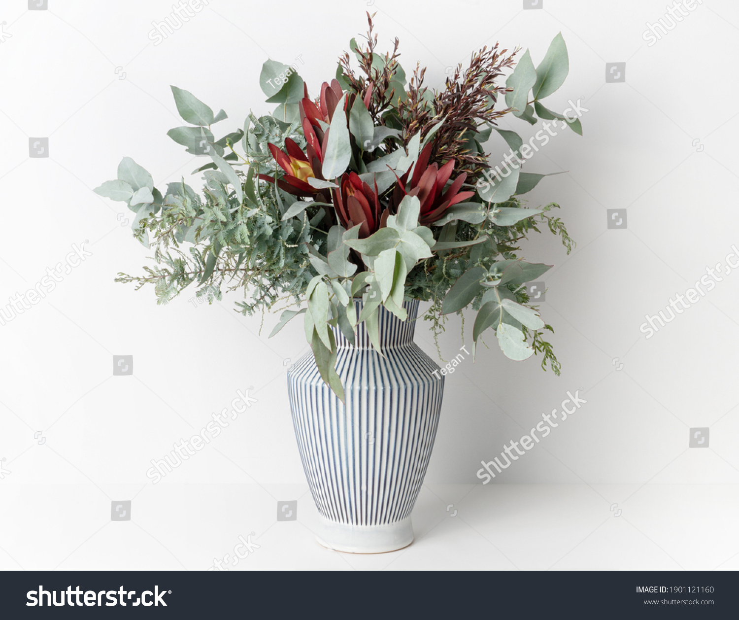 Beautiful flower arrangement of mostly Australian native flowers, including, Silvan Reds, Wattle foliage and Eucalyptus leaves, in a white and blue strip vase, with a white background. #1901121160