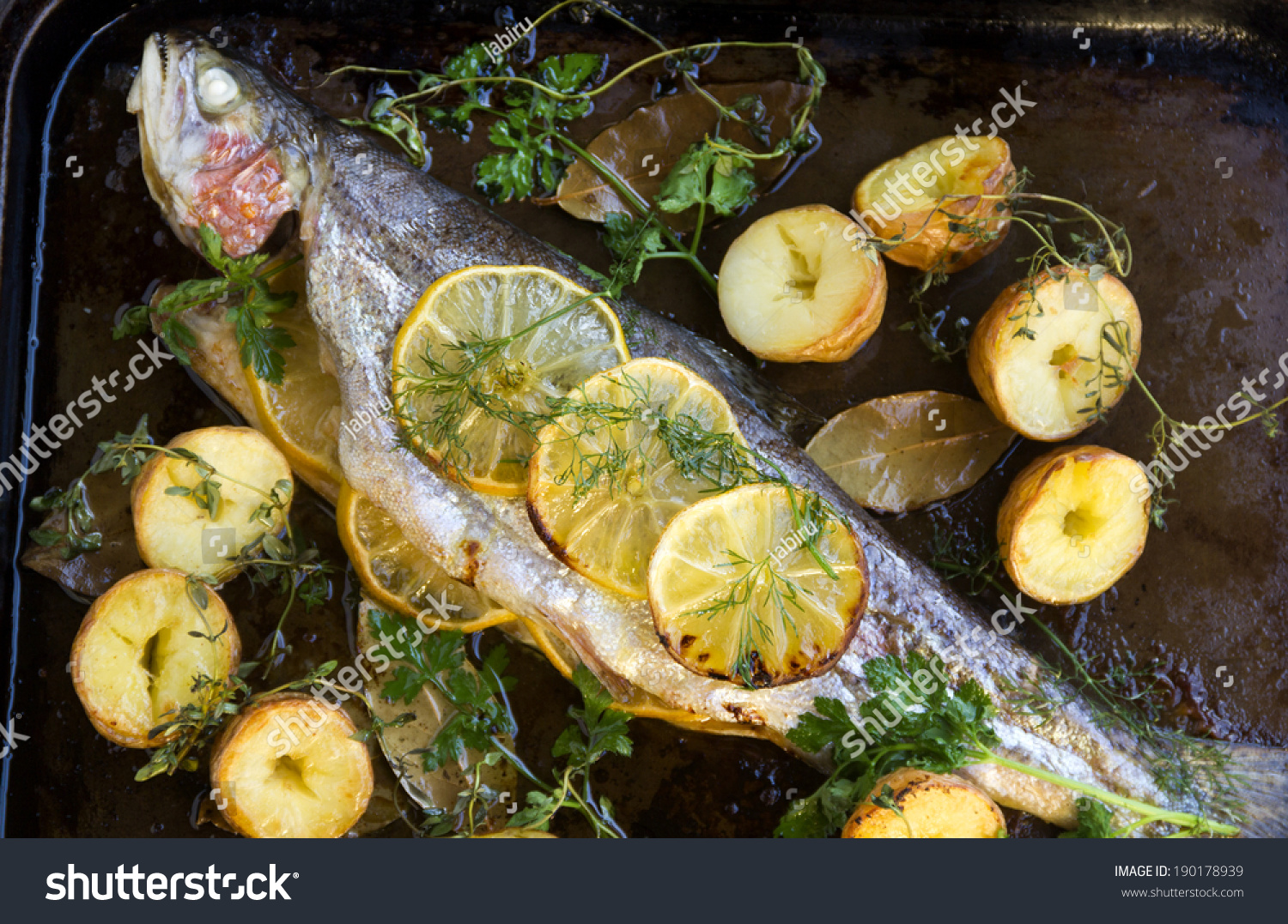 Delicious Baked Rainbow Trout Straight Oven Stock Photo ...