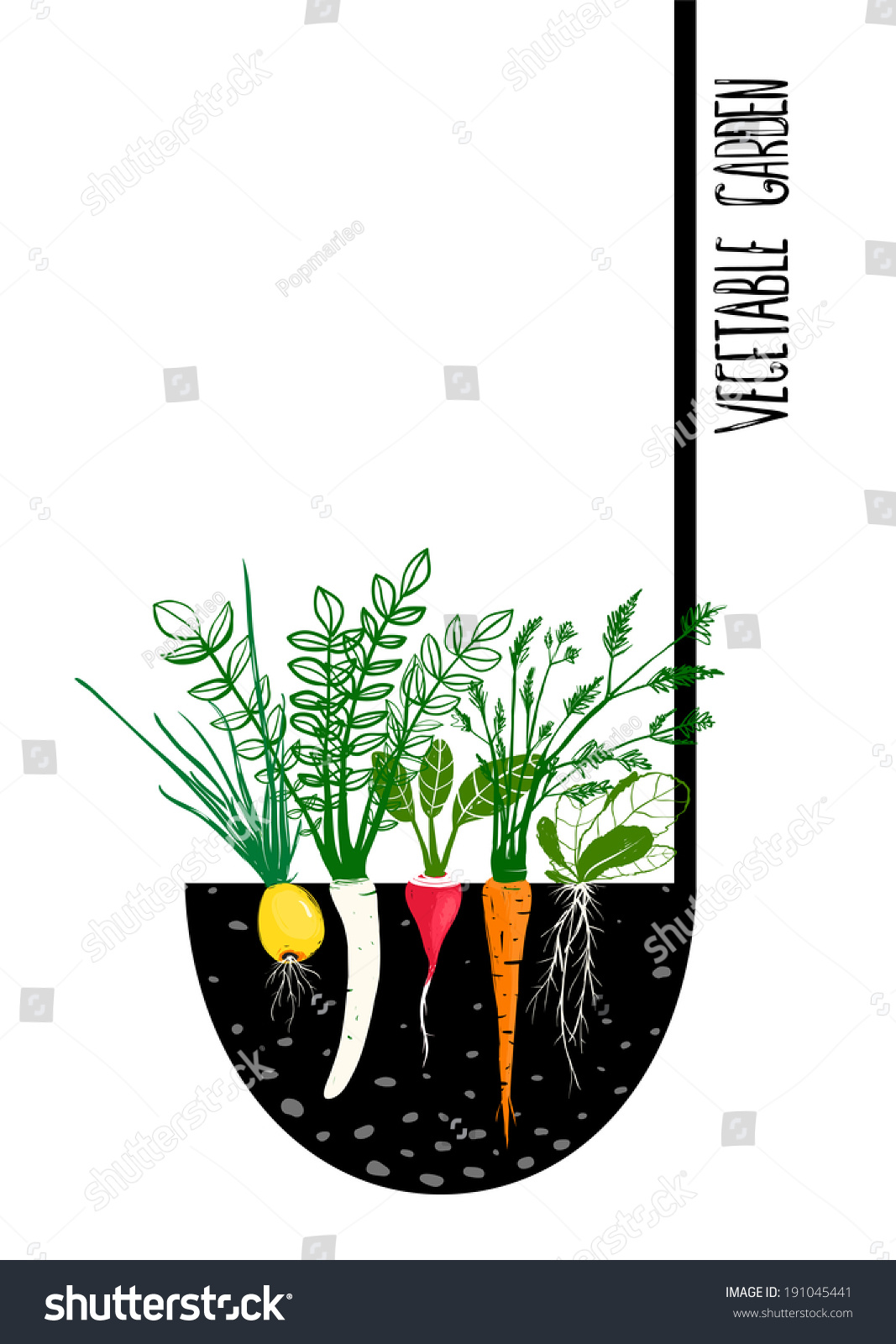 How To Start A Vegetable Garden From Scratch Start A Vegetable Garden From Scratch Indoor
