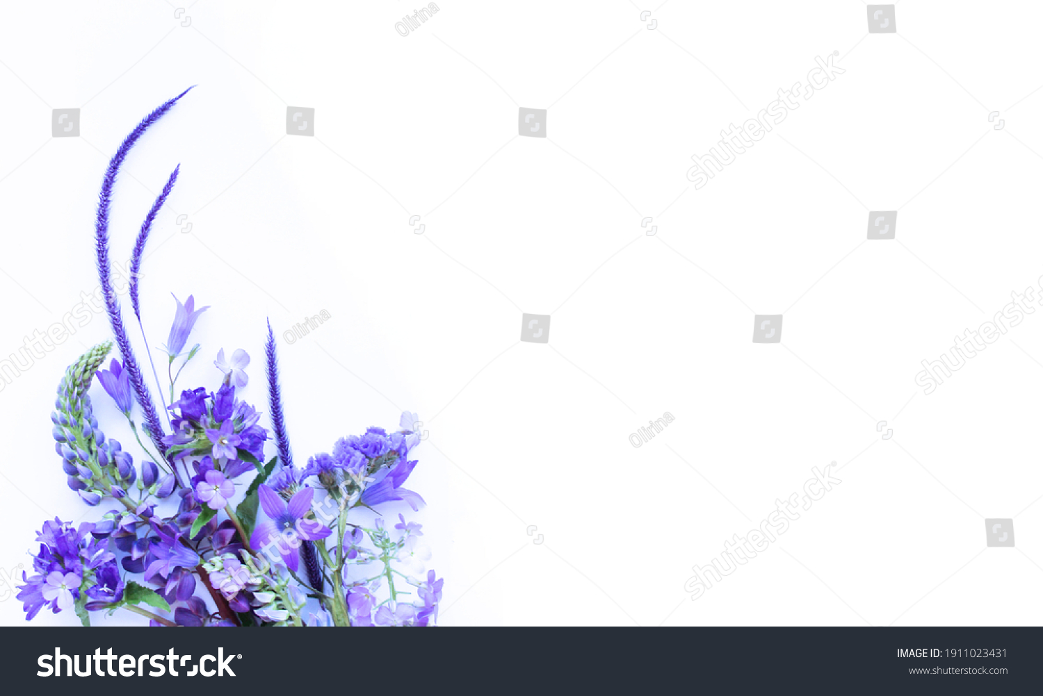 A bouquet of lilac flowers on a white background. Spring flower arrangement. Background for greeting cards, invitations. #1911023431