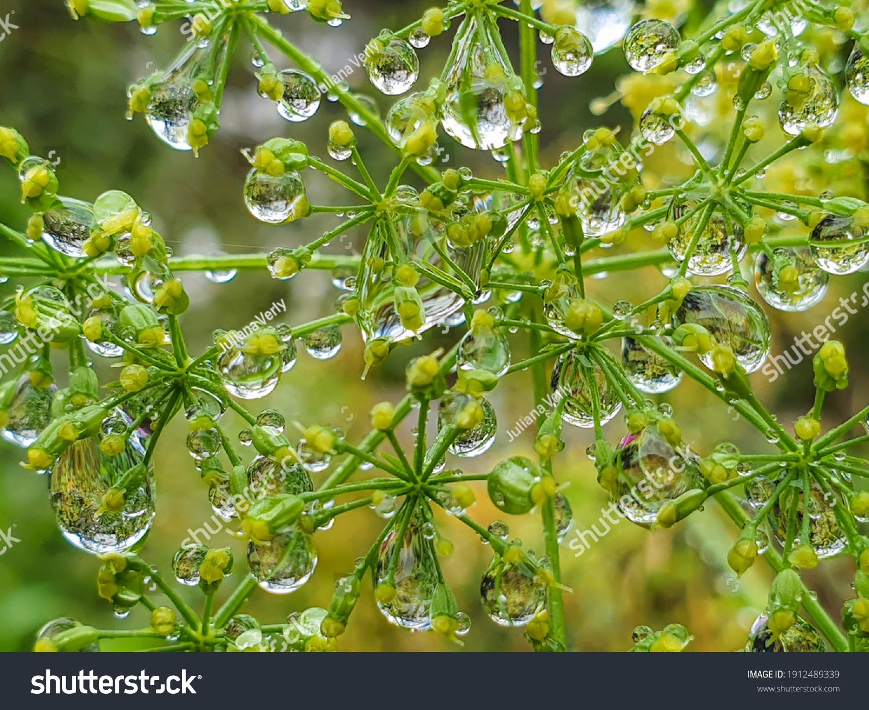 stock-photo--background-with-raindrops-o