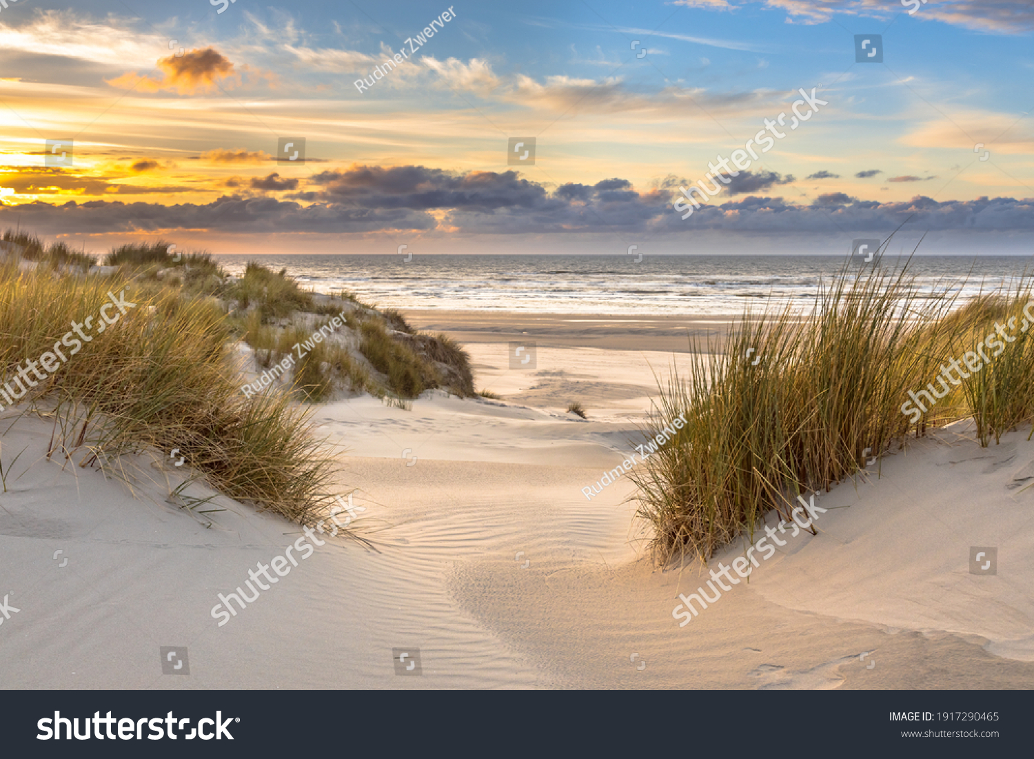 View from dune top over sunset in North Sea from the island of Ameland, Friesland, Netherlands #1917290465