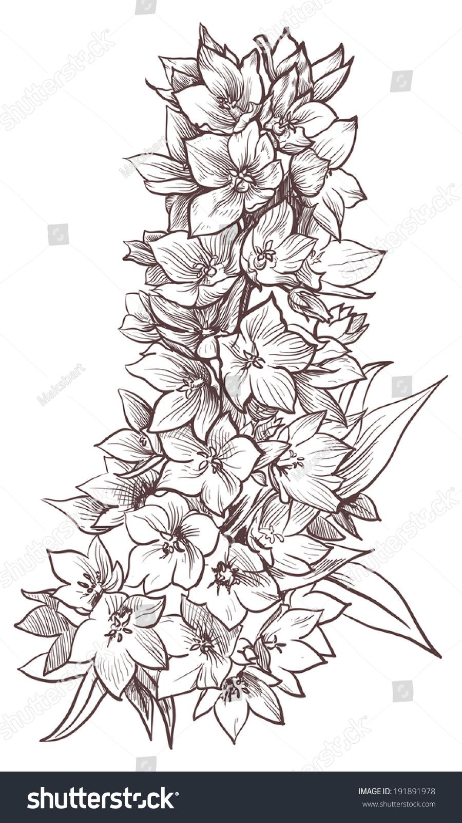 Peony flower isolated on white stock vector 368014568 shutterstock - Flower Stock Vector