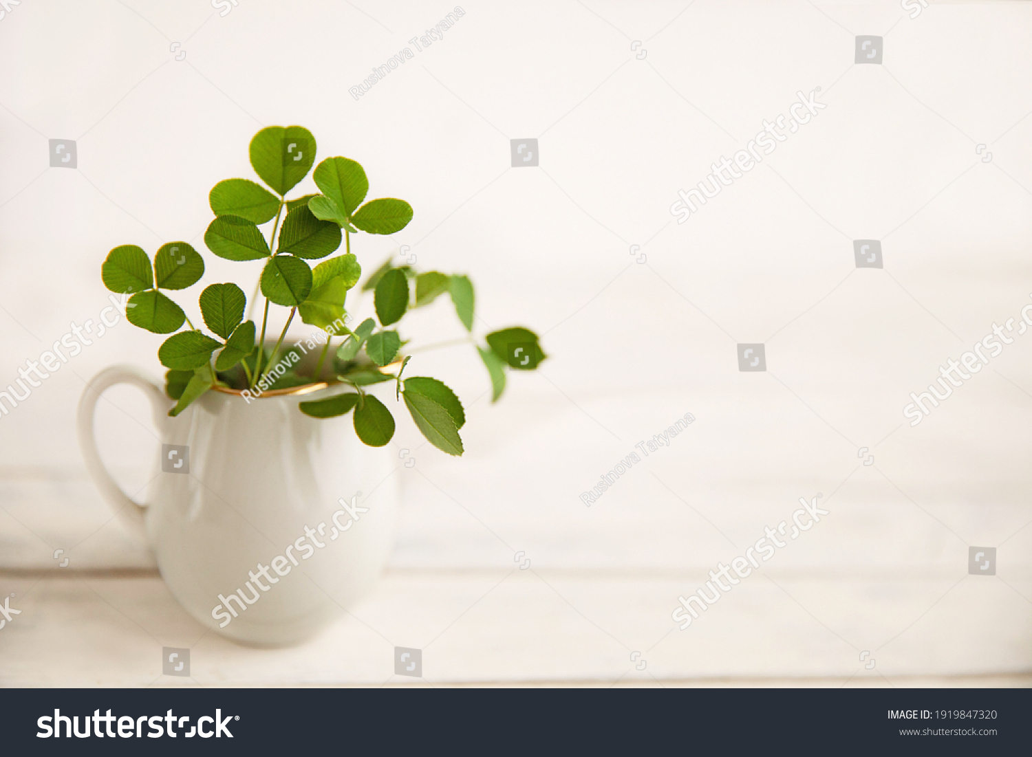 green clover leaves in a white jug on a white wooden background #1919847320