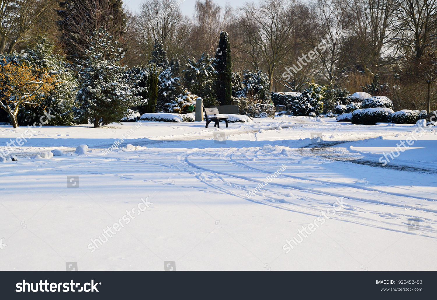 stock-photo-a-park-on-a-sunny-winter-day