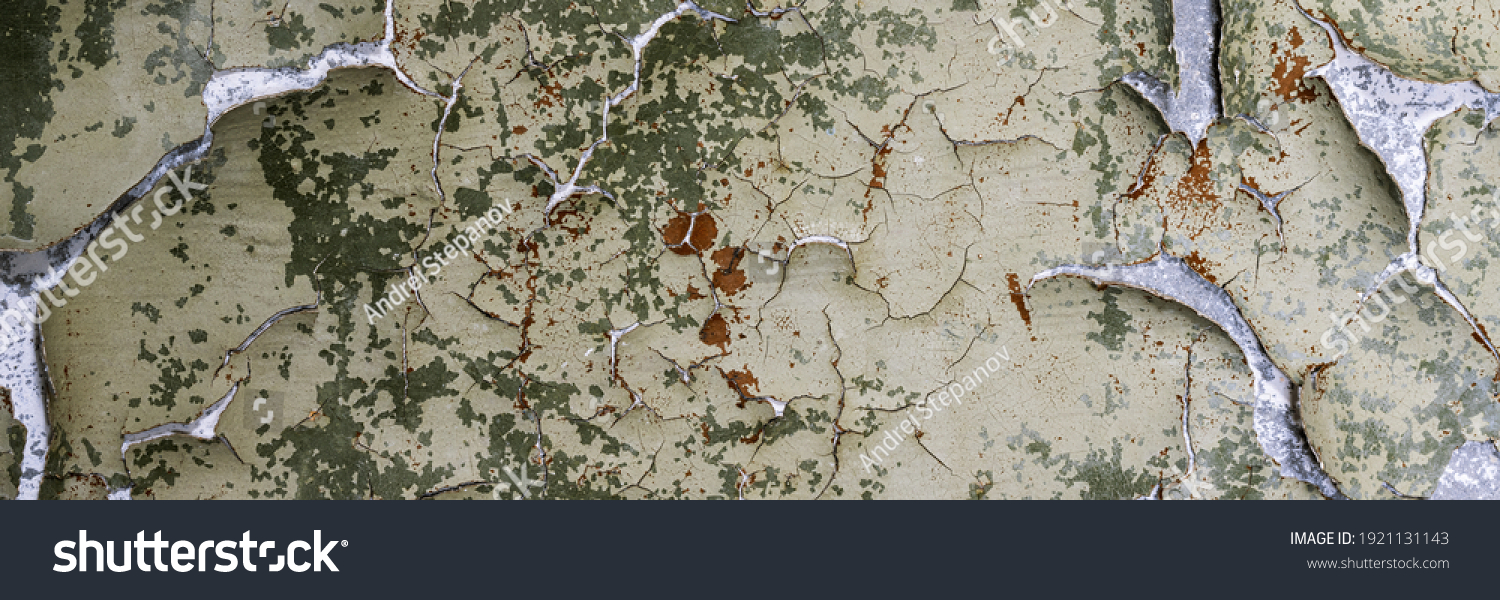 Peeling paint on the wall. Panorama of a concrete wall with old cracked flaking paint. Weathered rough painted surface with patterns of cracks and peeling. Wide panoramic grunge texture for background #1921131143
