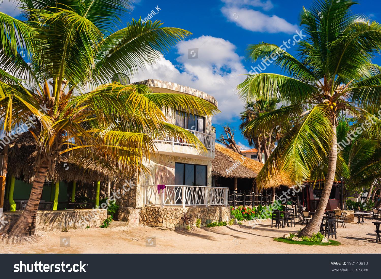 Tropical Island Beach Hut: Hut In A Tropical Jungle. Jungle Lodge. Tropical Beach