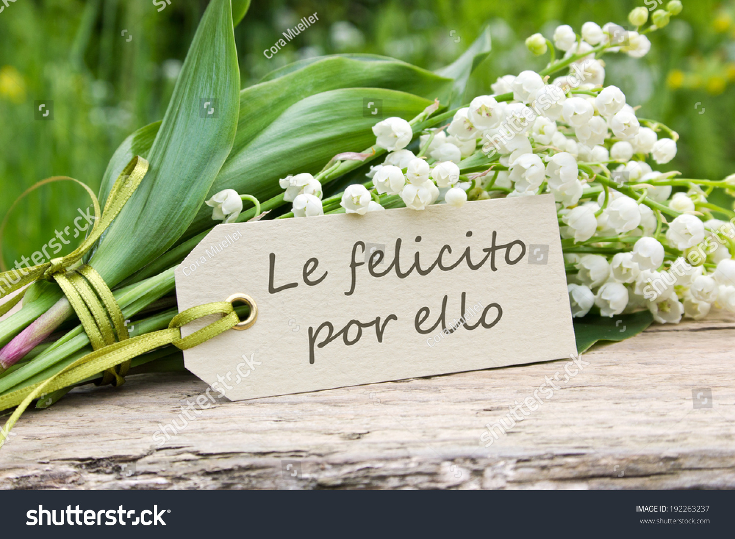 Spanish greeting card lily valley i congratulate stock photo spanish greeting card with lily of the valleyi congratulate you on this spanish izmirmasajfo