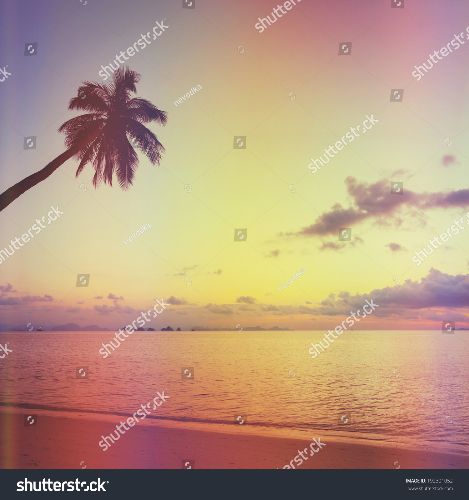 Tropical Sunset With Palm Tree Silhouette At Beach, Retro