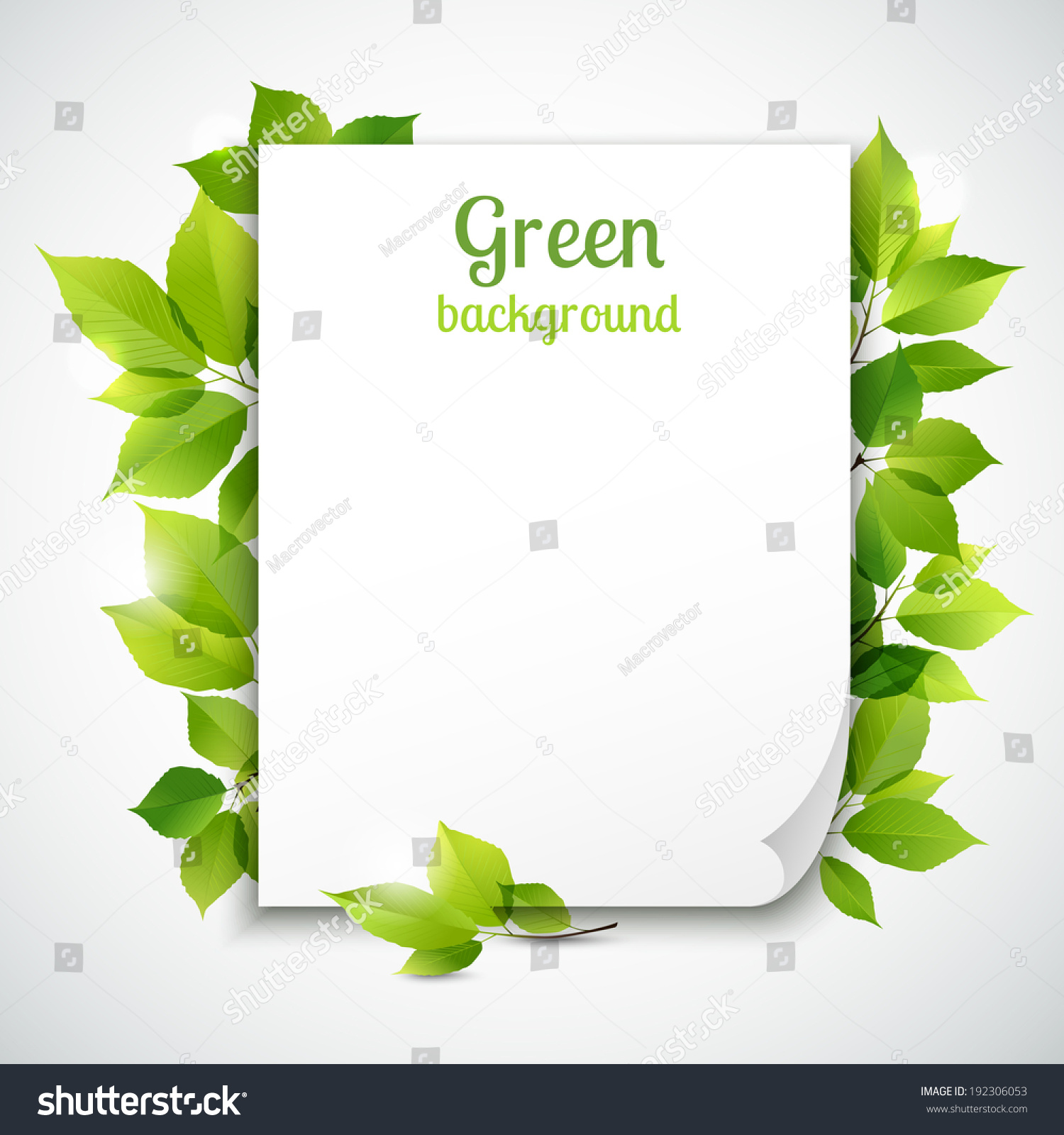 Fresh spring green grass leaves frame stock vector royalty free fresh spring green grass leaves frame template with curling blank sheet paper design vector illustration maxwellsz