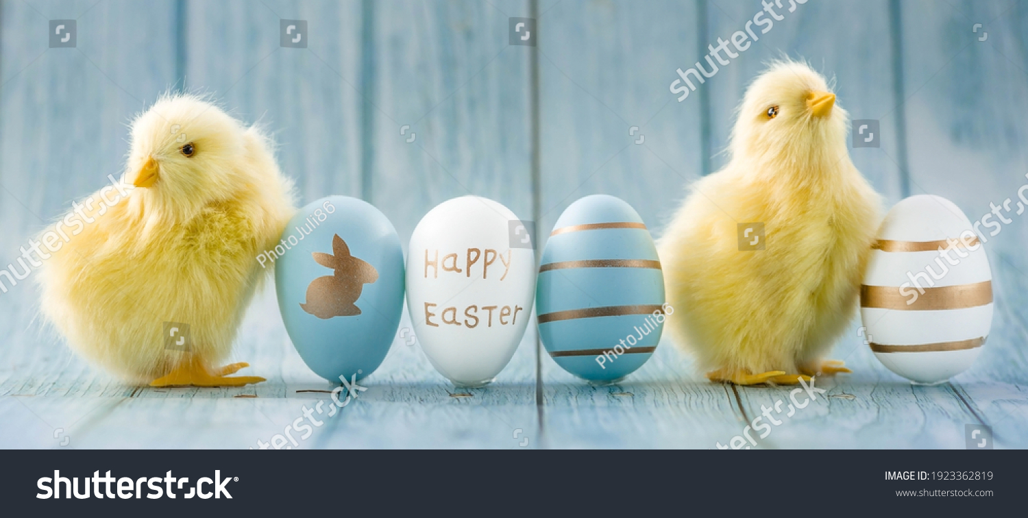 Banner. Blue, yellow, white eggs and yellow chicks on a blue wooden background. The minimal concept. An Easter card with a copy of the place for the text. #1923362819