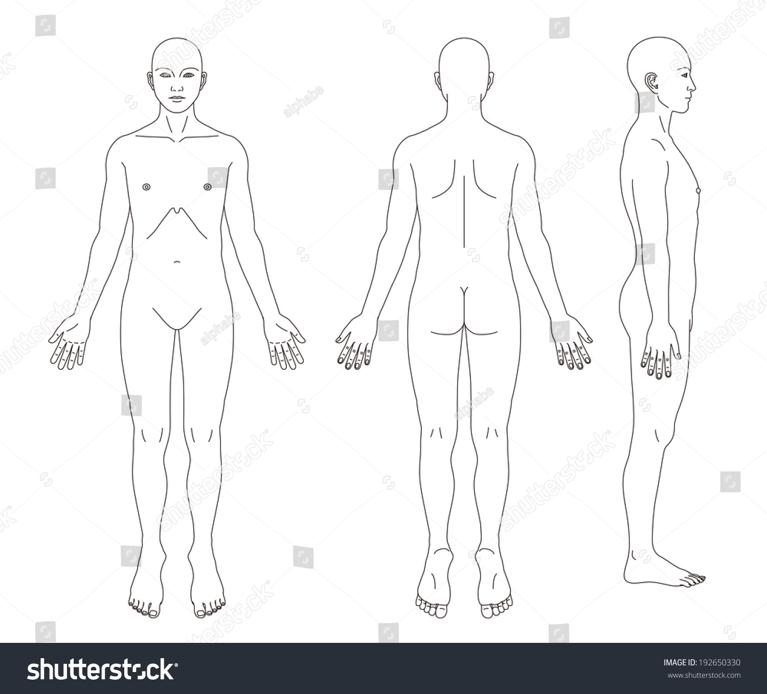 Arts of humans body or sex