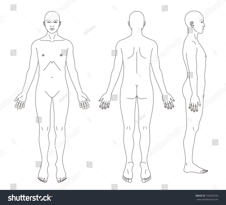 medical record human body diagram no sex stock photo 192650330  : medical body diagram - findchart.co
