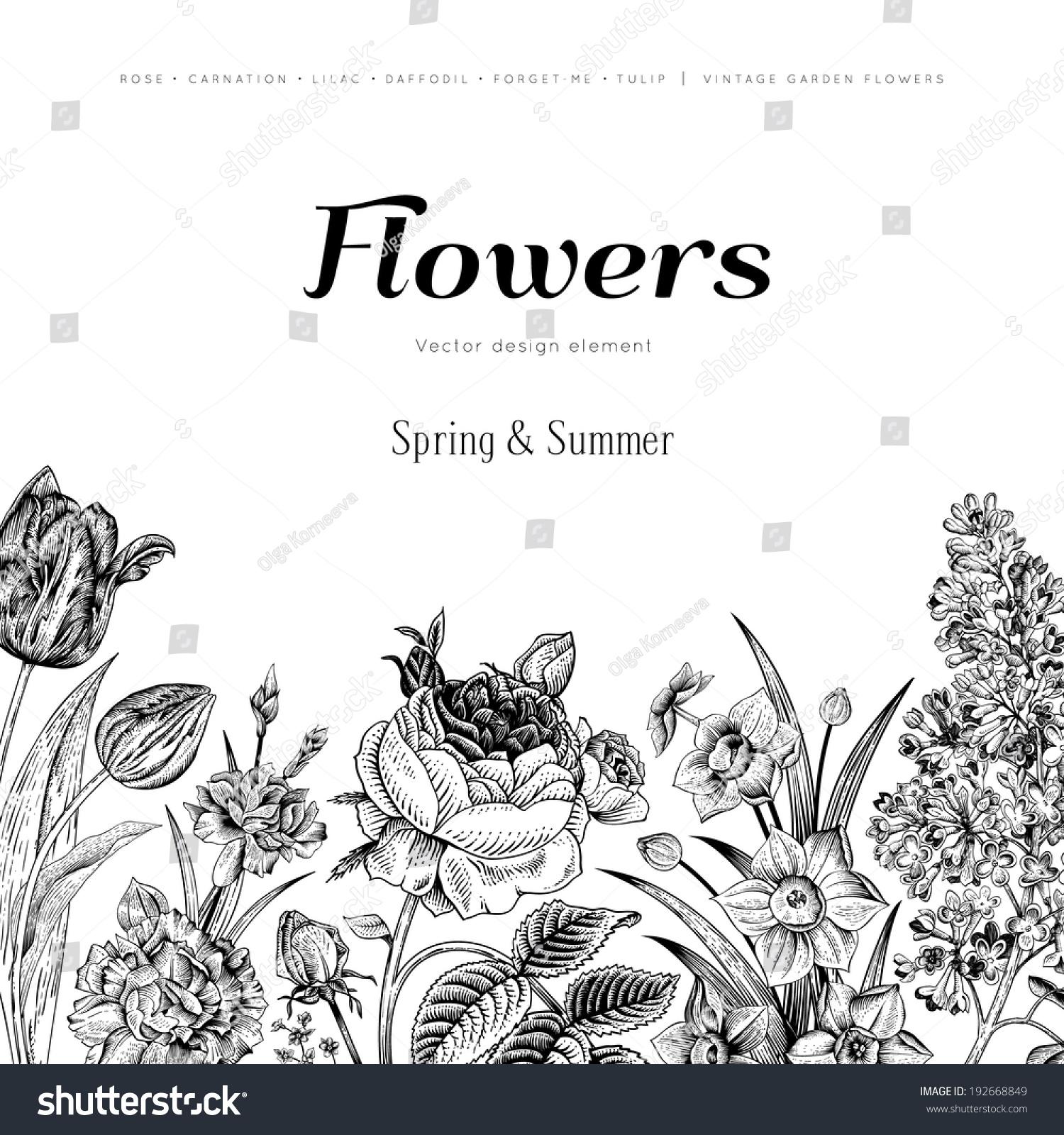 Summer Floral Vintage Vector Background Blossoming Stock Vector 192668849 - Shutterstock