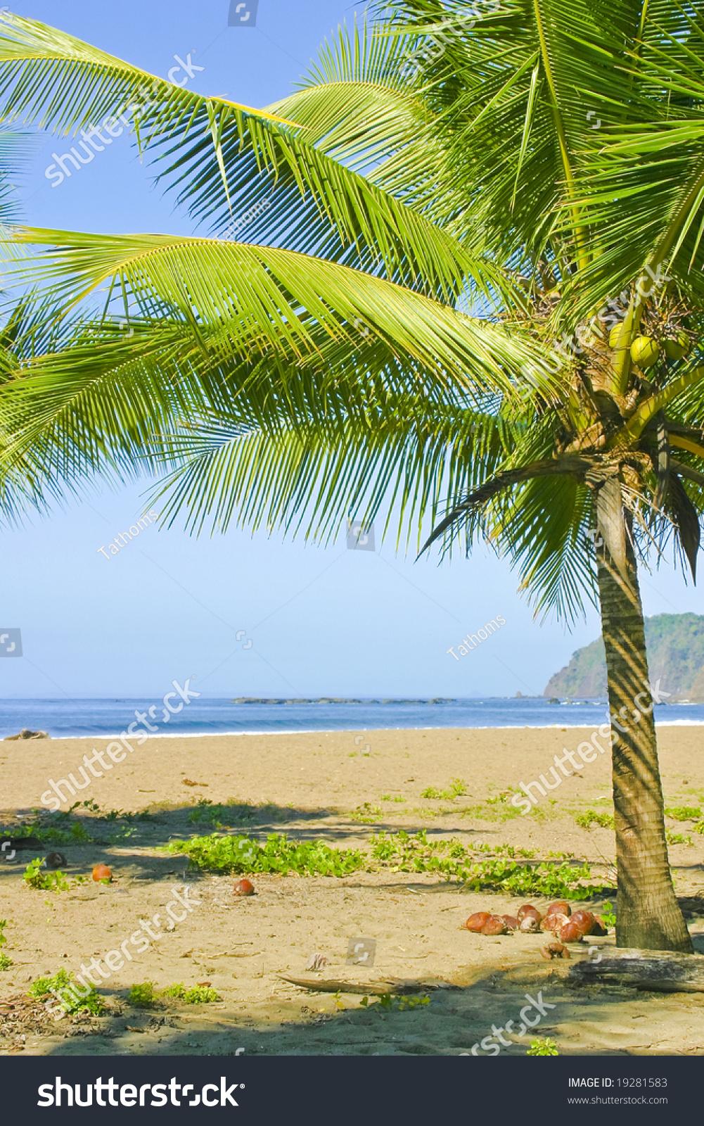 Jako beach, Costa Rica
