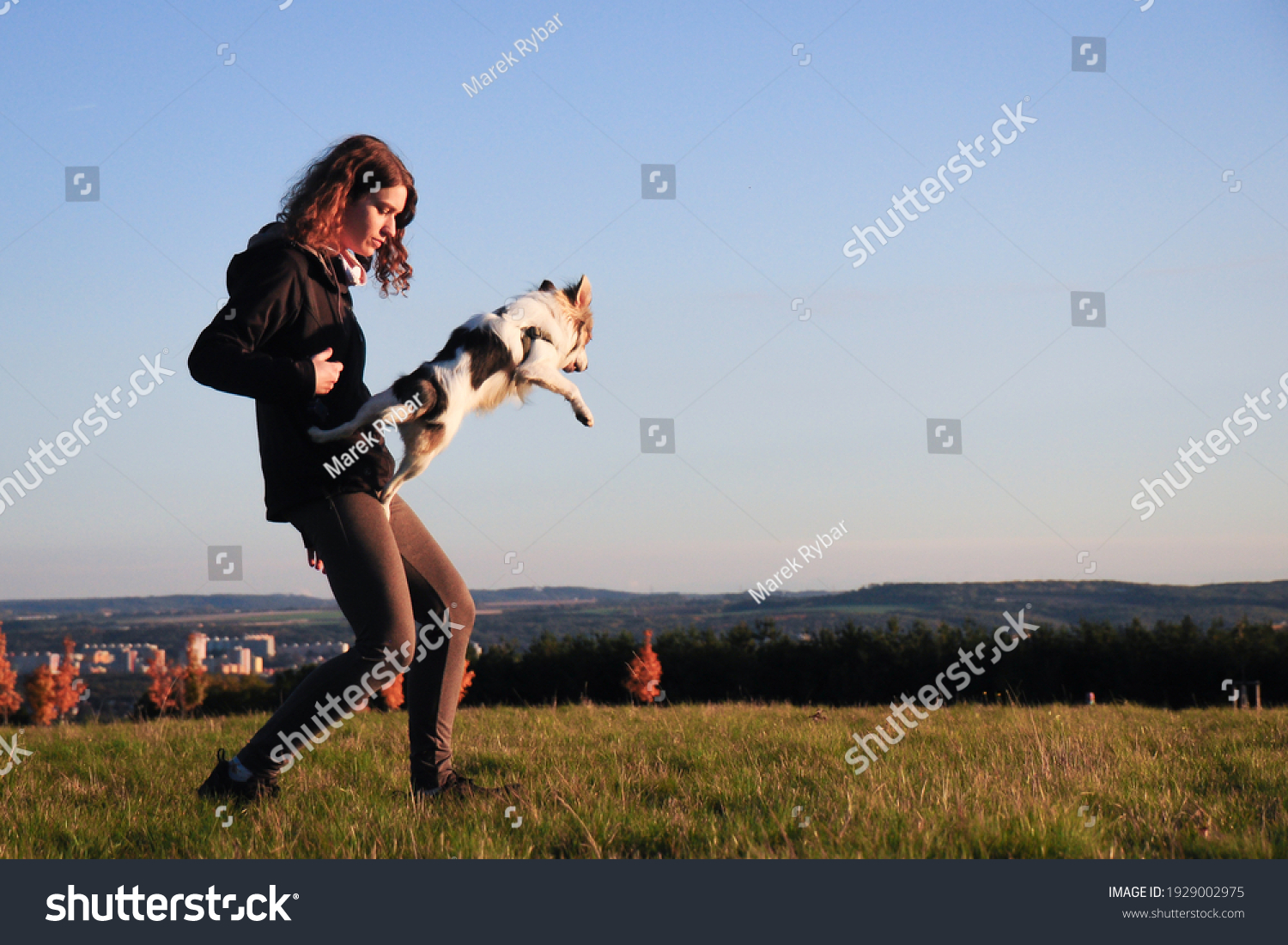 Prague, Czech republic - October 24, 2020: Young woman playing and training with her dog some jumping tricks. Adopted dog from shelter. Sunsetting autumn time with perfectly blue sky.