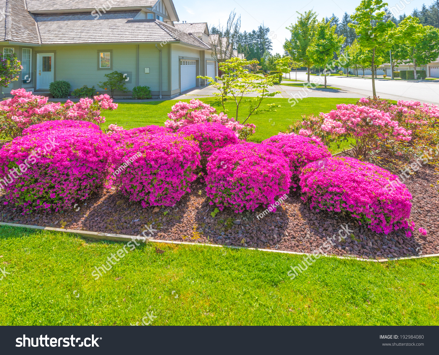 great neighborhood nicely decorated flowerbed front stock