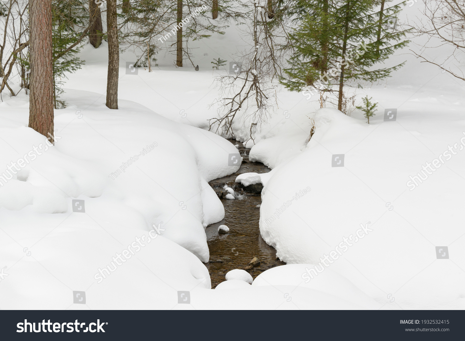stock-photo-stream-in-the-winter-forest-