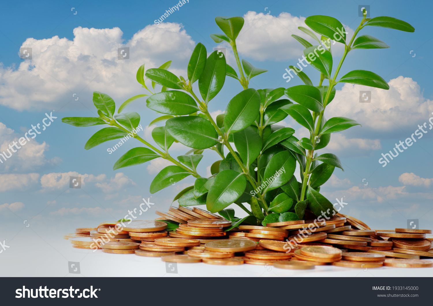 stock-photo-pile-of-coins-with-growing-p