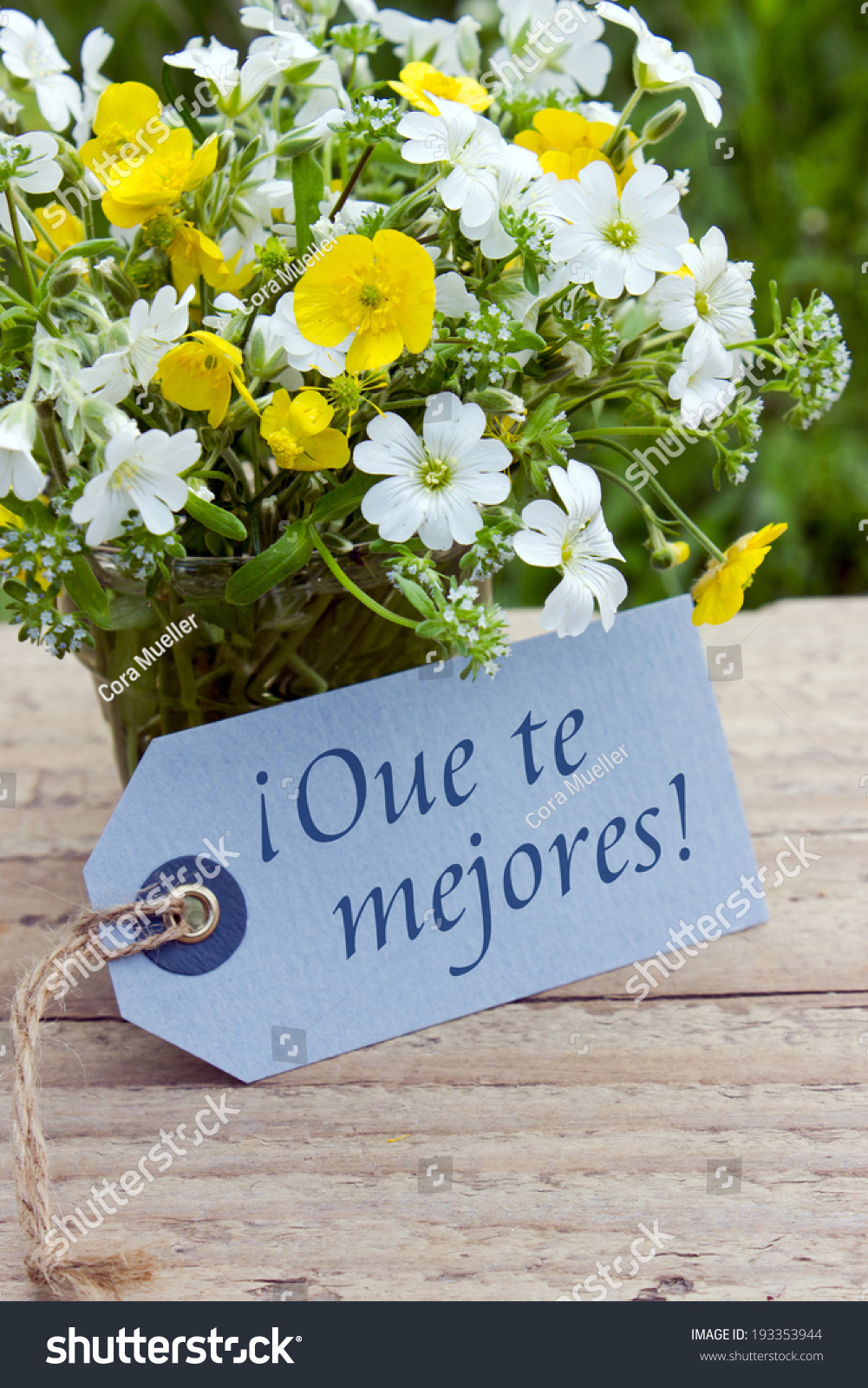 Spanish get well card wildflowers may you stock photo royalty free spanish get well card with wildflowersmay you feel better soonspanish izmirmasajfo