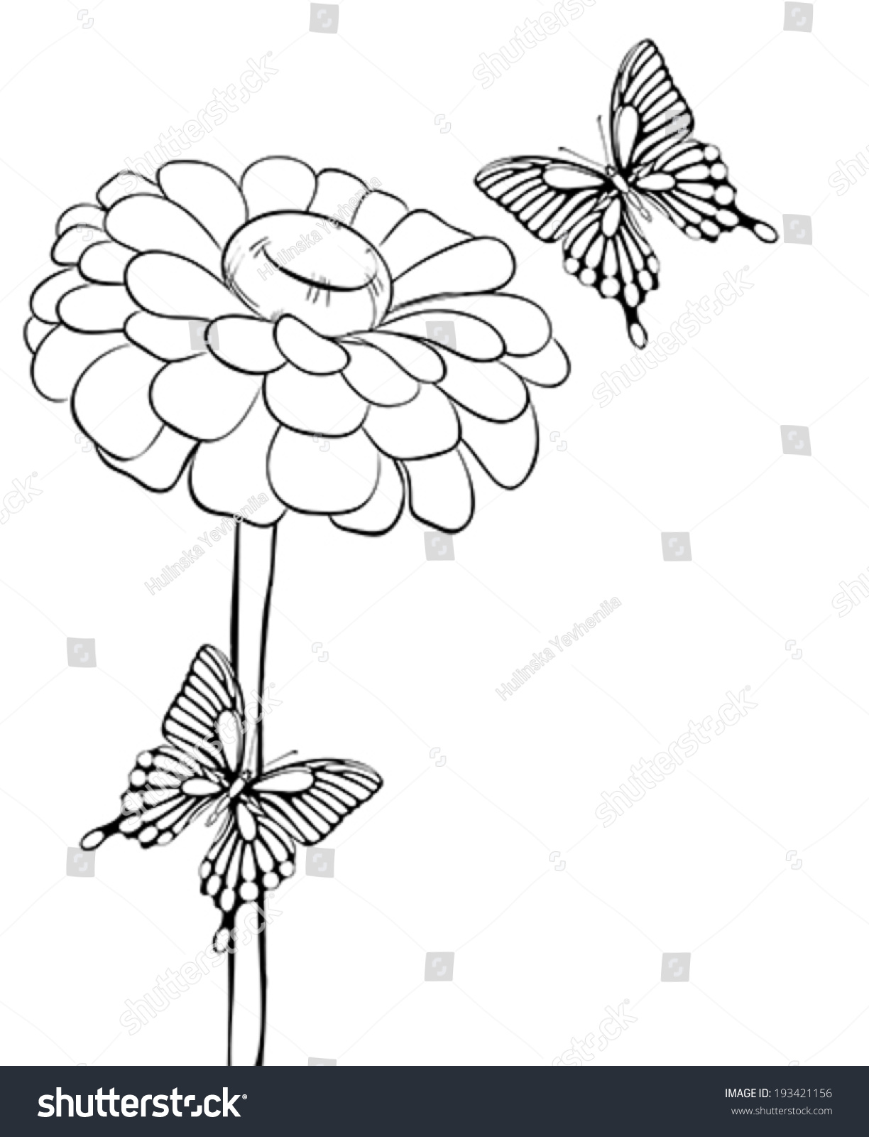 Contour Line Drawing Butterfly : Beautiful black and white flower with butterflies hand