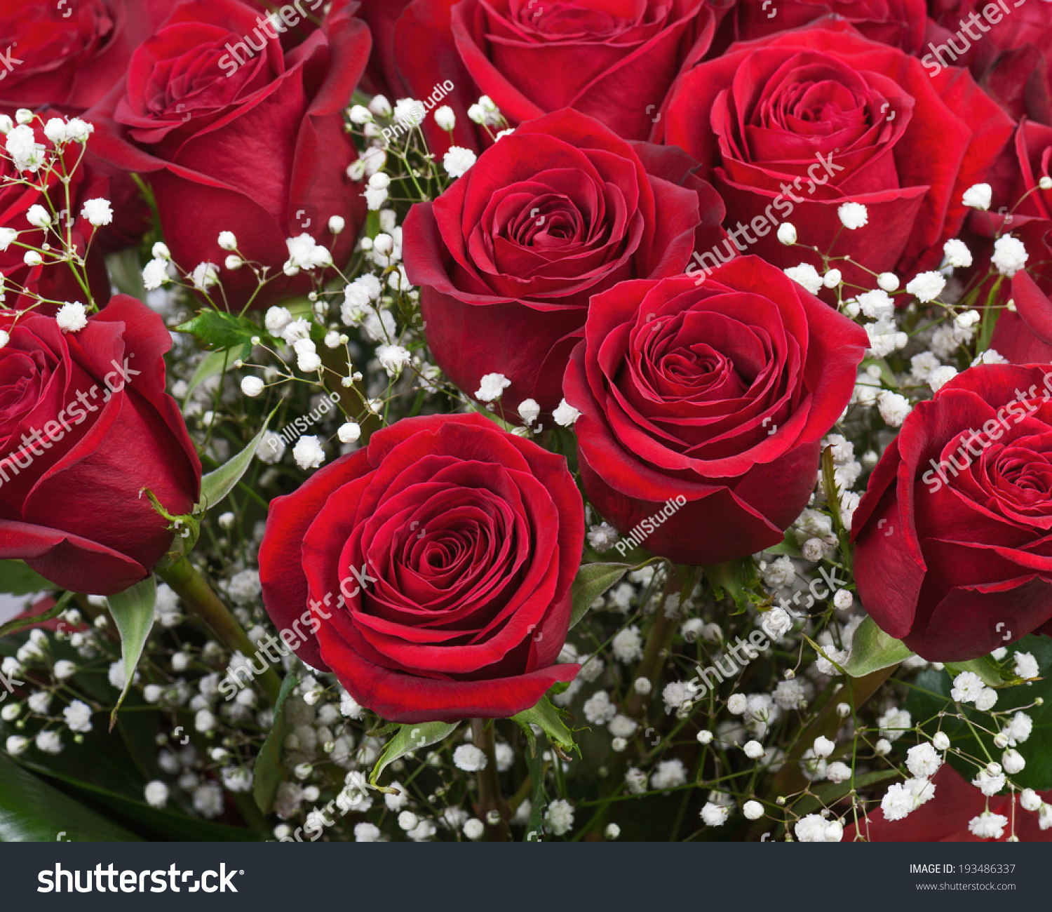 Nice Flower Bouquet Red Roses Closeup Stock Photo Edit Now