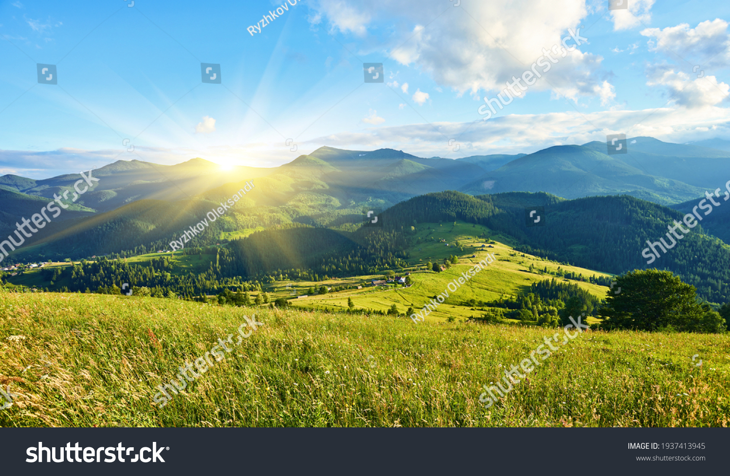 Idyllic landscape in the Alps with fresh green meadows and blooming flowers and snow-capped mountain tops in the background #1937413945