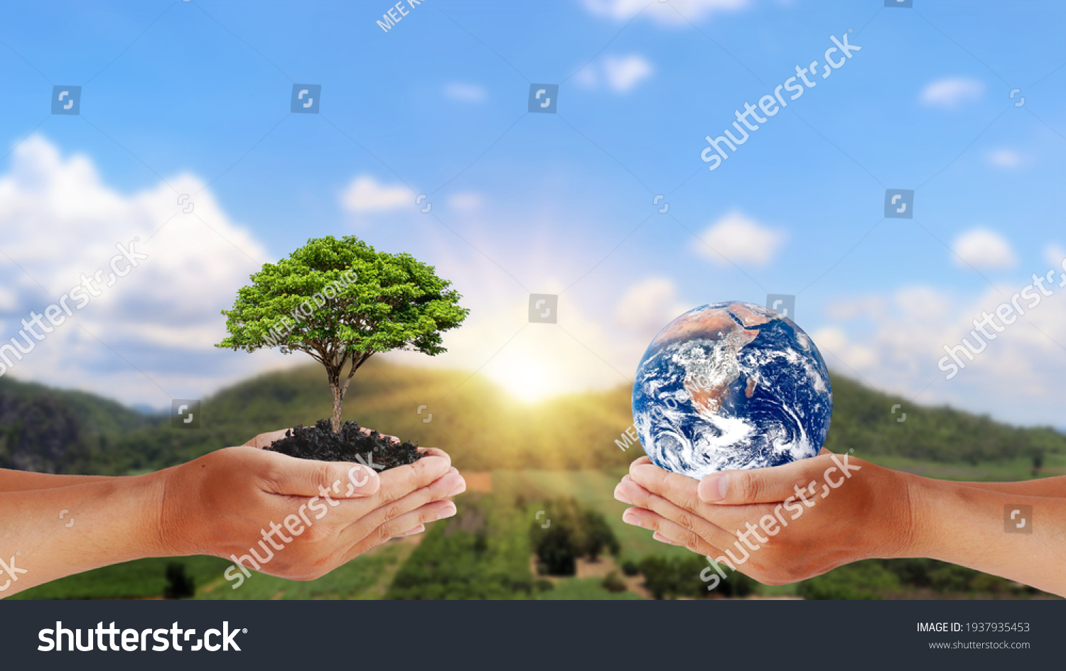 Exchange of planets in the hands of humans with young plants in the hands of humans, the concept of Earth Day and Conservation of the Environment. Elements of this image are decorated by NASA. #1937935453