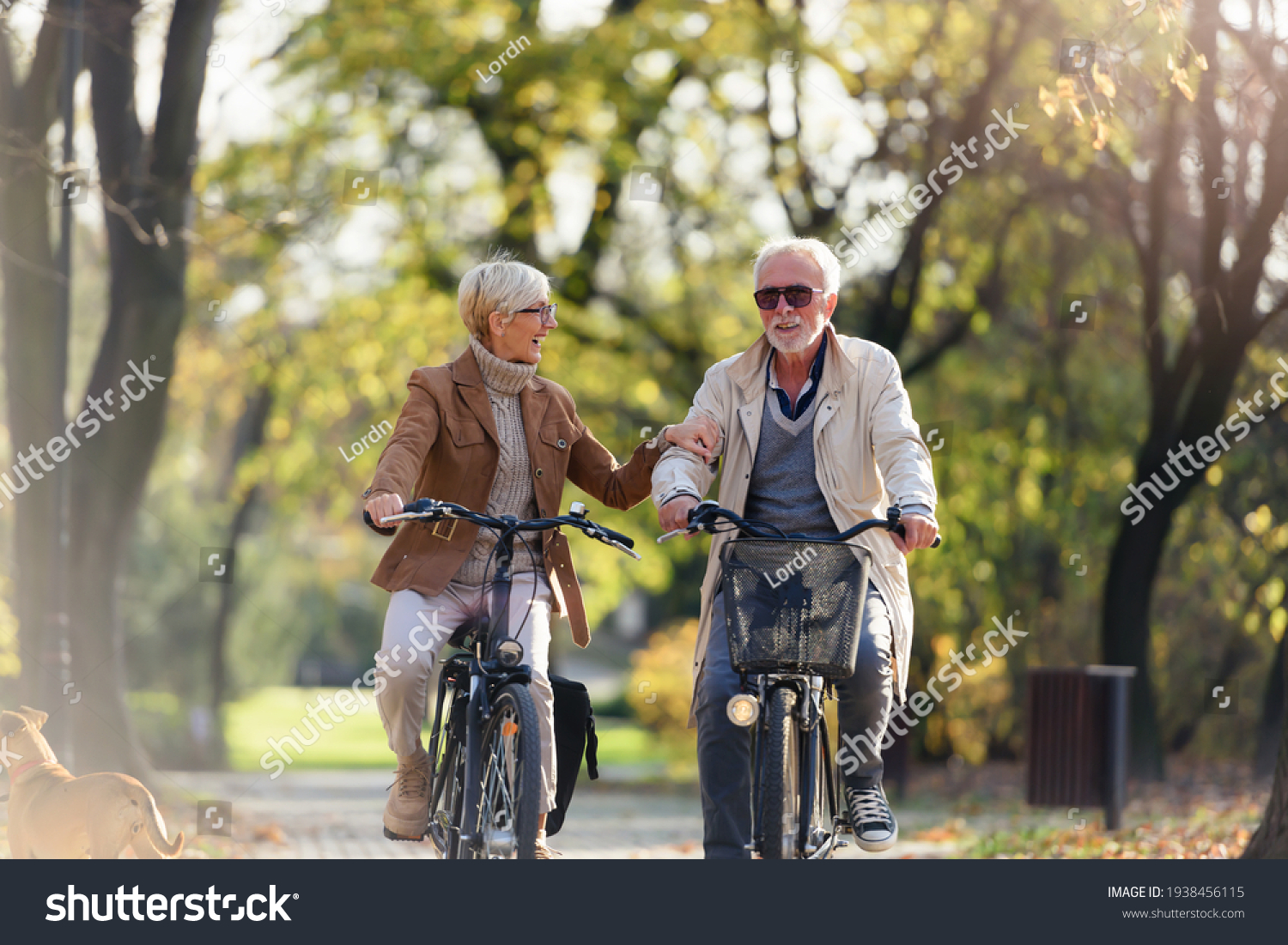 Cheerful active senior couple with bicycle in public park together having fun. Perfect activities for elderly people. Happy mature couple riding bicycles in park #1938456115