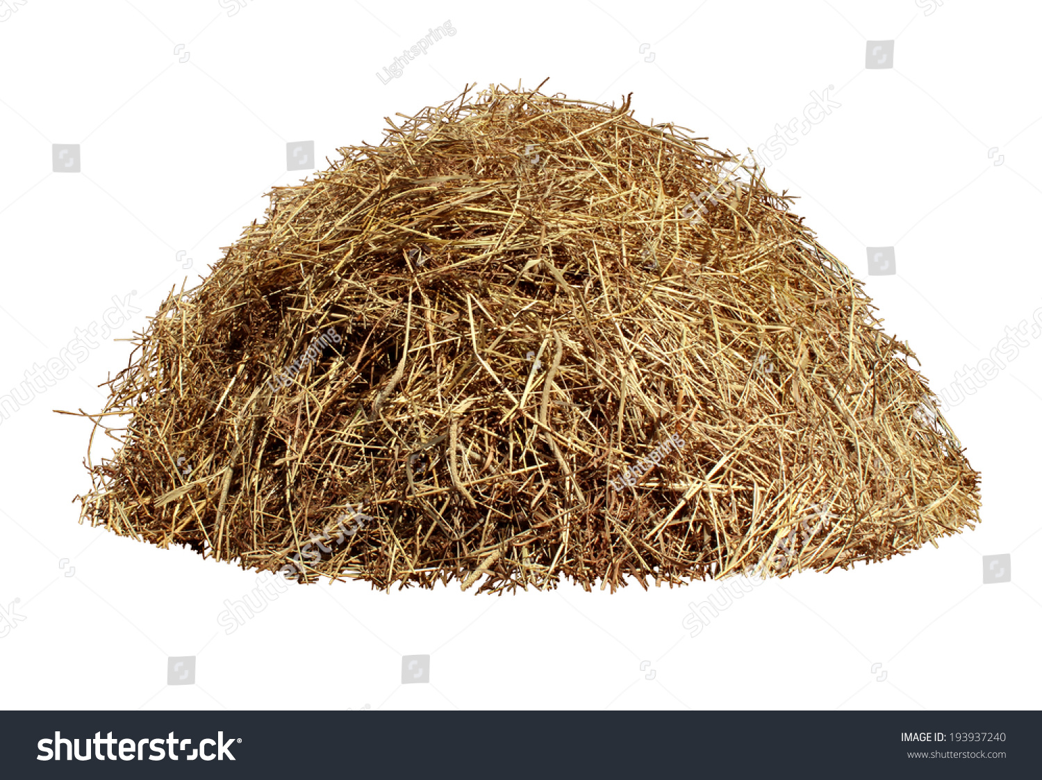 Hay pile isolated on a white background as an agriculture farm and farming symbol of harvest time with dried grass straw as a mountain of dried grass haystack.
