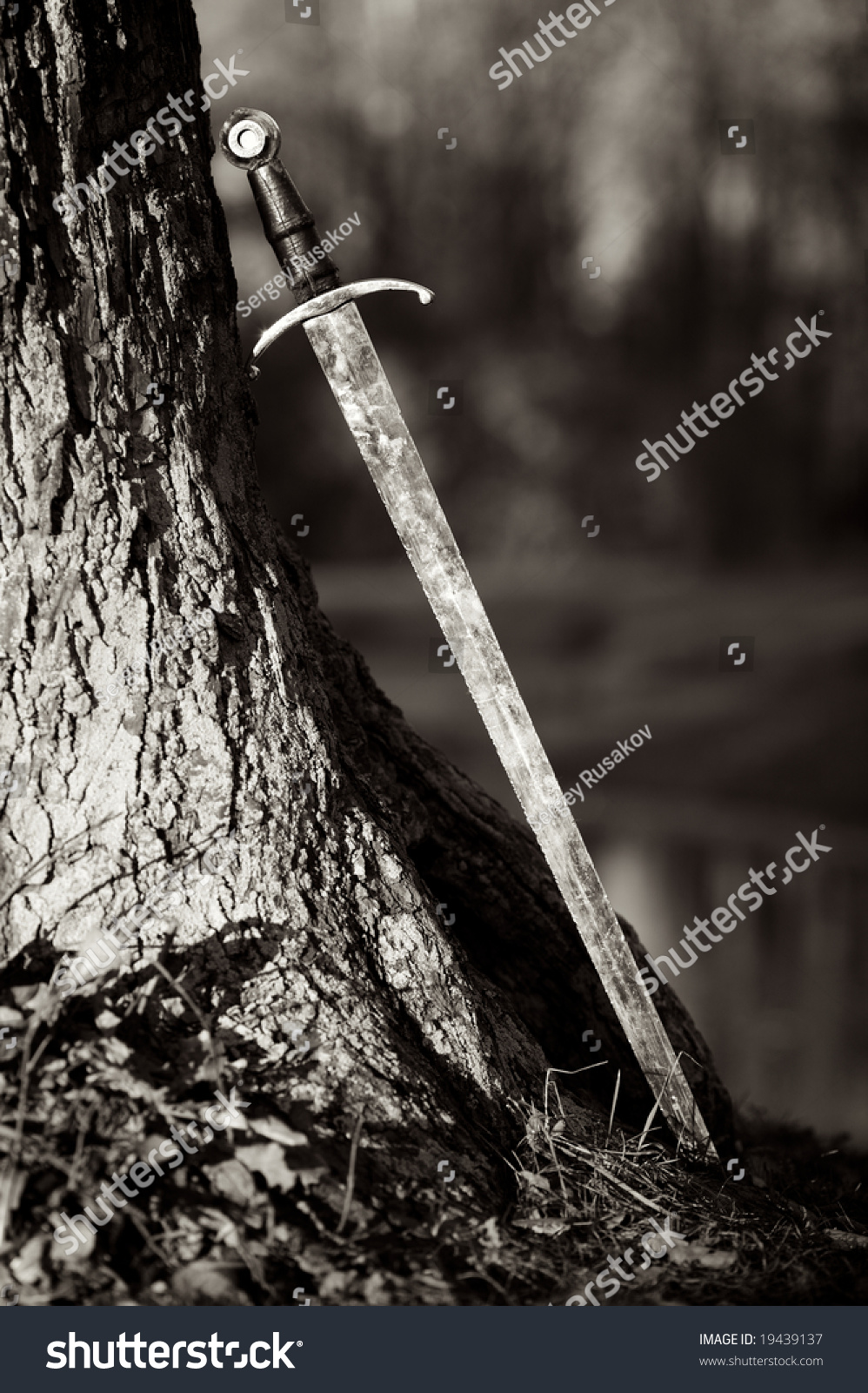 An artistic black white image on an ancient sword leaning against a tree in a